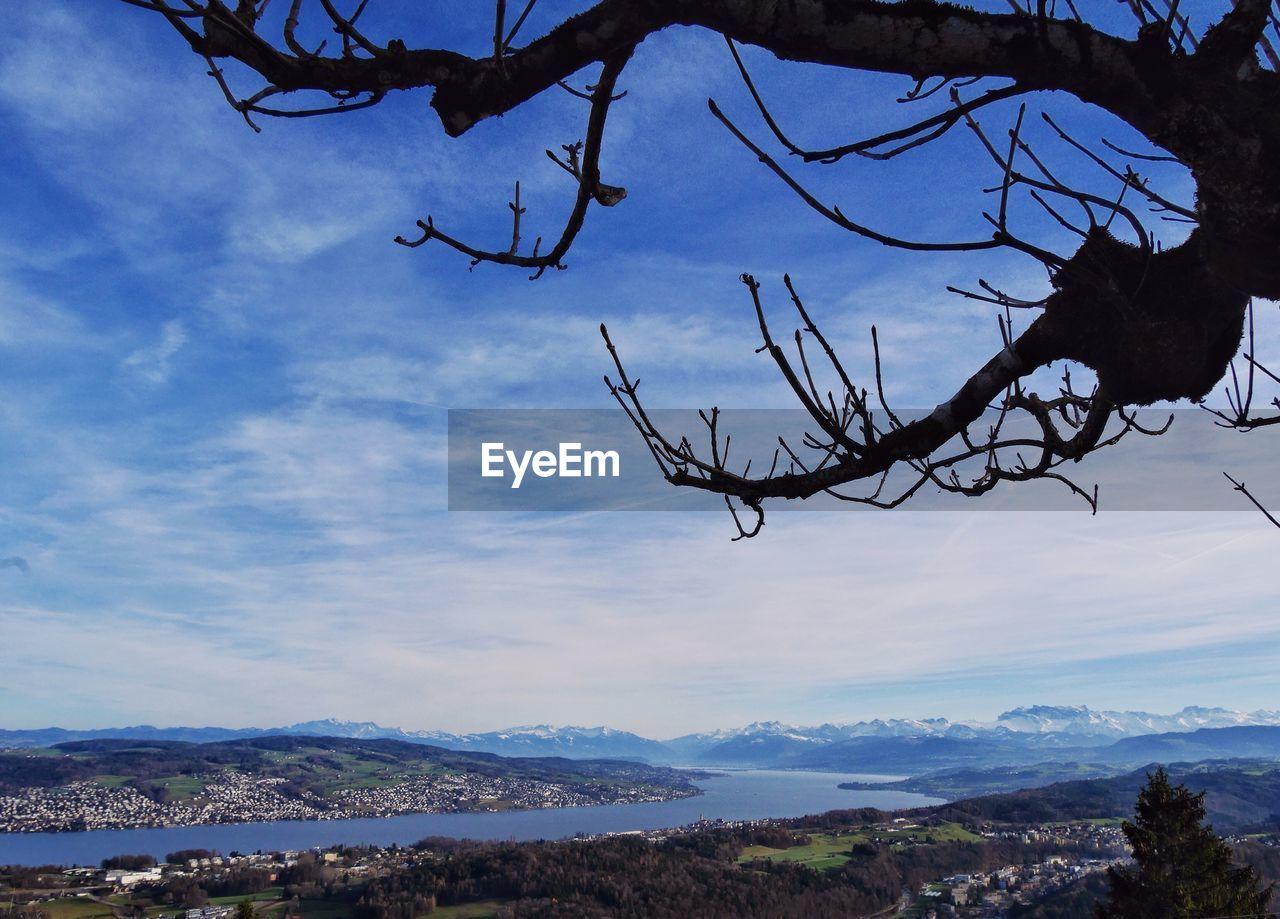 nature, outdoors, sky, day, beauty in nature, branch, no people, cloud - sky, tree, tranquility, mountain, close-up
