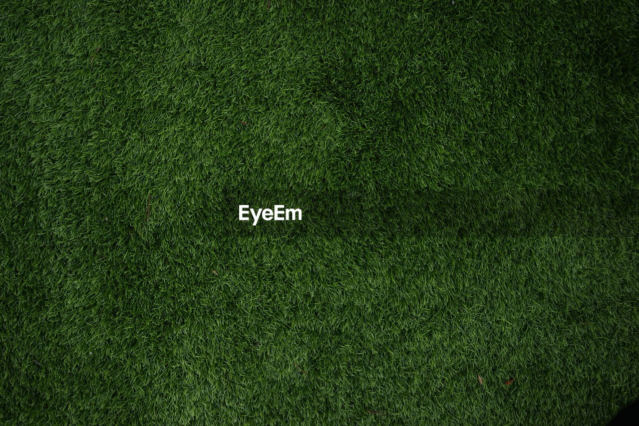 green color, backgrounds, grass, full frame, textured, plant, sport, american football field, no people, lawn, blank, copy space, soccer, nature, pattern, team sport, stadium, textured effect, american football - sport, playing field, turf