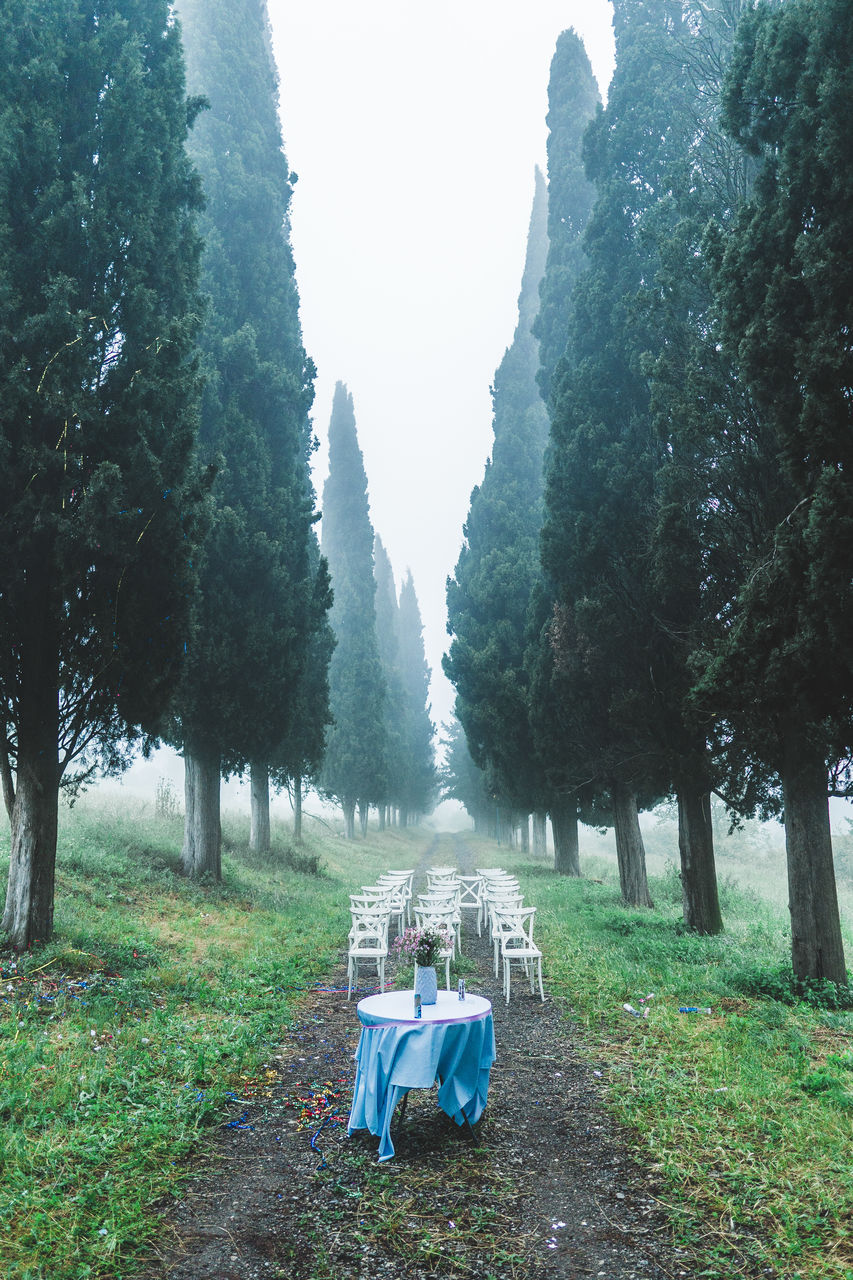 Empty Chairs Arranged At Park