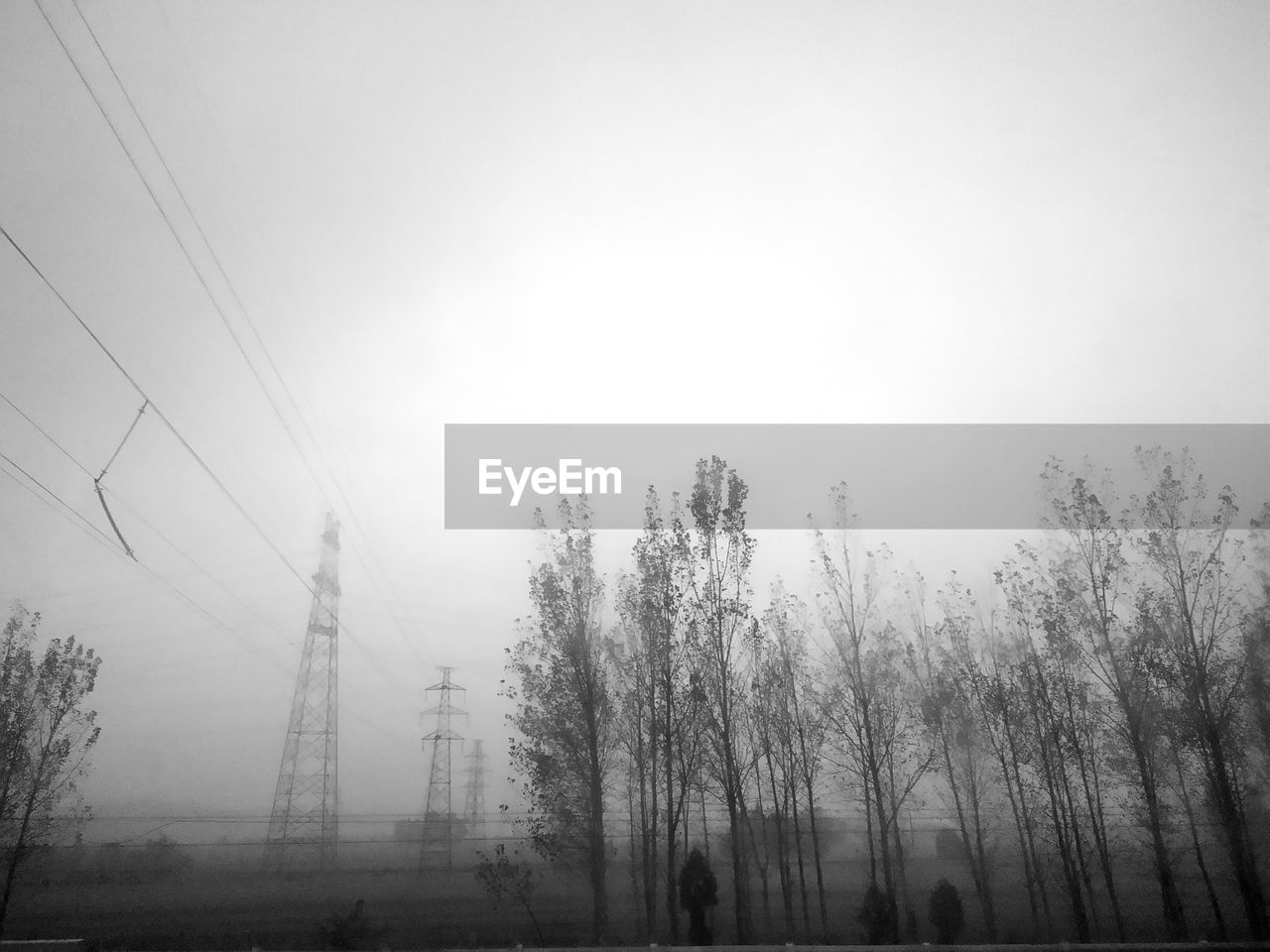 fog, cable, mist, power line, nature, foggy, hazy, no people, electricity pylon, tranquility, landscape, tranquil scene, tree, day, outdoors, electricity, beauty in nature, sky, low angle view, fuel and power generation, scenics