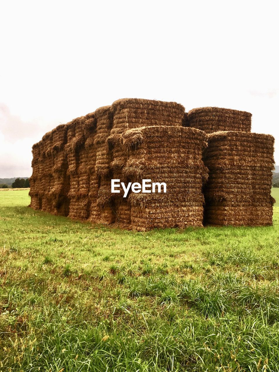 land, grass, plant, field, nature, sky, environment, stack, landscape, bale, hay, haystack, agriculture, rural scene, day, farm, no people, tranquil scene, tranquility, clear sky, outdoors