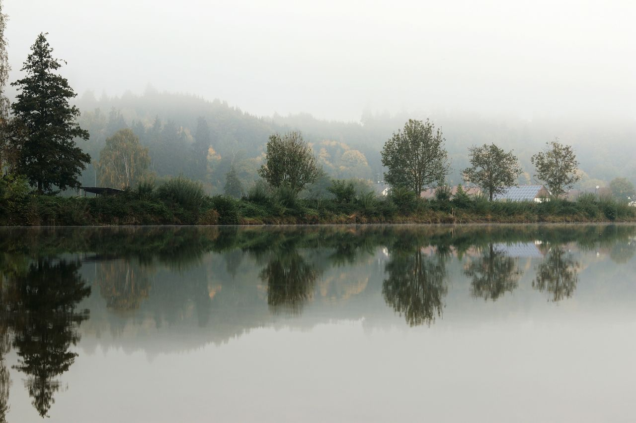 reflection, tree, fog, no people, nature, lake, tranquility, water, outdoors, scenics, day, beauty in nature, sky