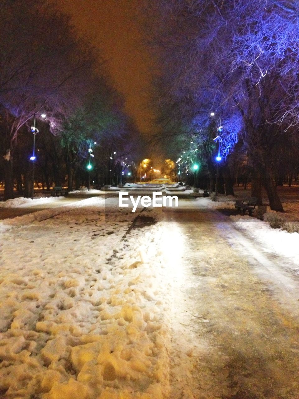 illuminated, night, snow, winter, cold temperature, tree, weather, nature, outdoors, no people, road, beauty in nature, sky, galaxy, astronomy