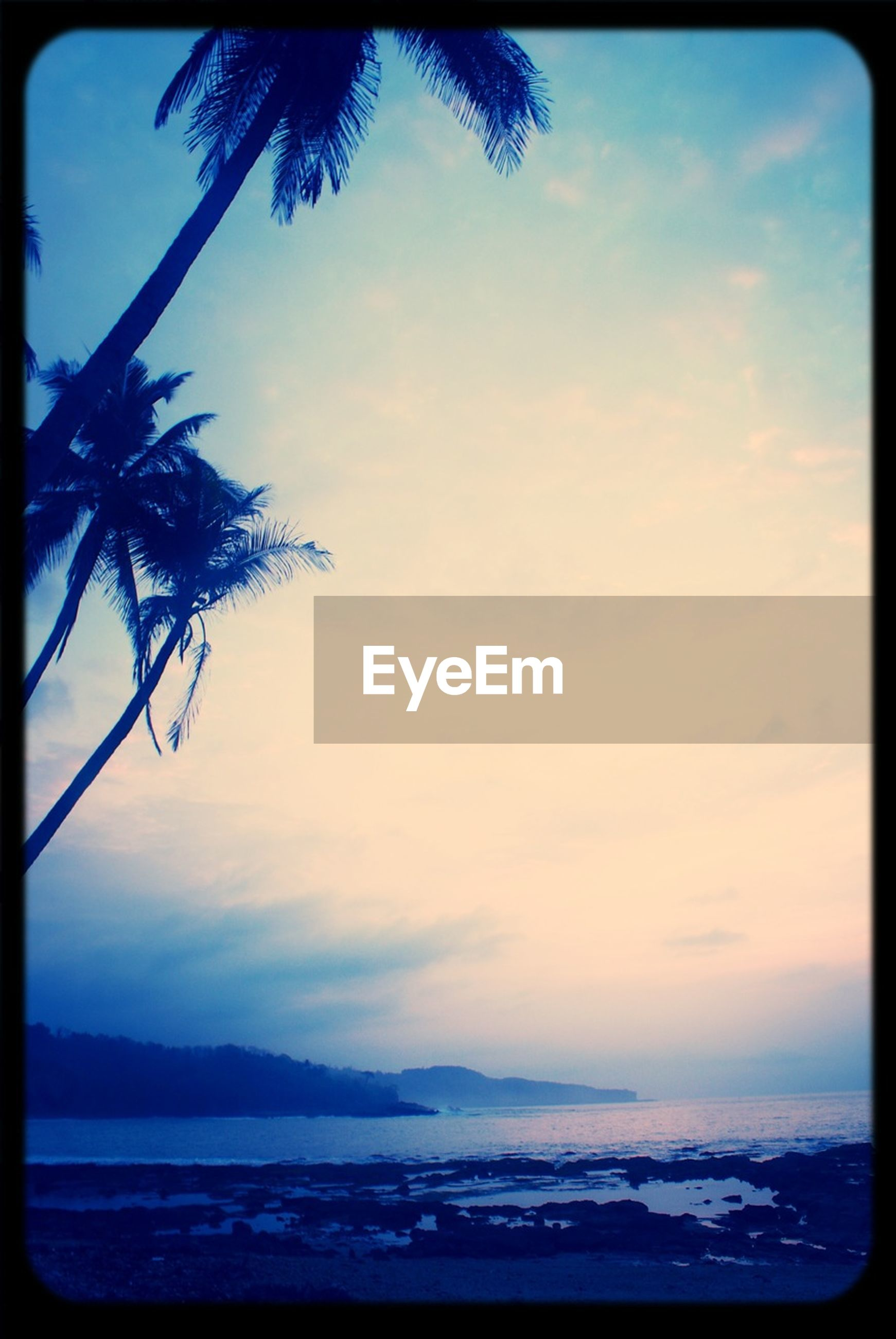 transfer print, sky, water, sea, tranquil scene, tranquility, palm tree, scenics, beauty in nature, auto post production filter, tree, nature, cloud - sky, beach, cloud, mountain, idyllic, silhouette, horizon over water, blue