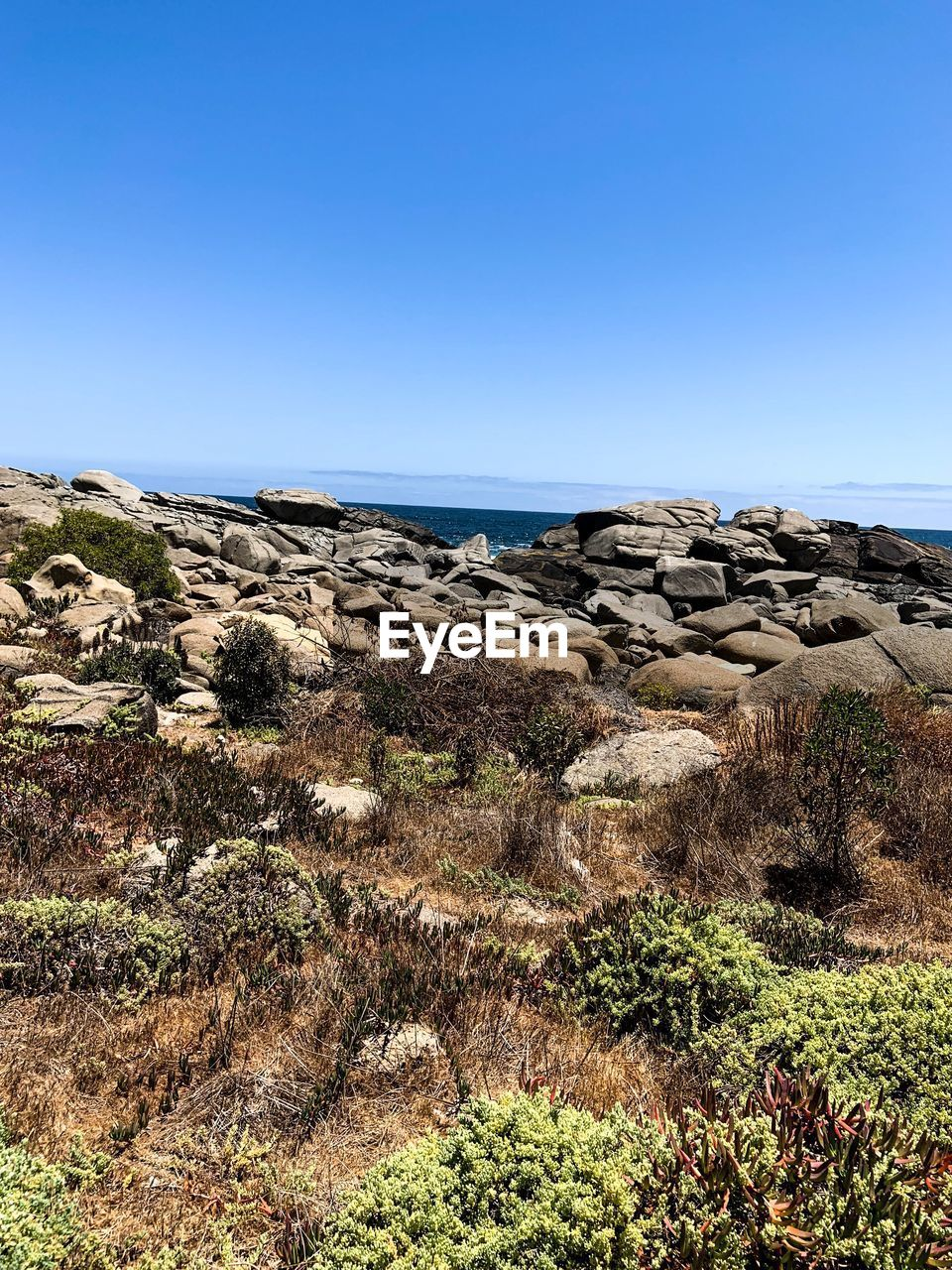 sky, beauty in nature, rock, clear sky, scenics - nature, tranquility, copy space, tranquil scene, plant, rock - object, nature, solid, day, non-urban scene, blue, sea, land, no people, water, horizon, horizon over water, outdoors, eroded, rocky coastline