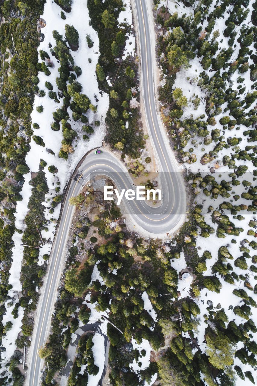 plant, snow, tree, nature, winter, high angle view, day, cold temperature, beauty in nature, no people, transportation, growth, road, white color, covering, scenics - nature, outdoors, tranquility, curve