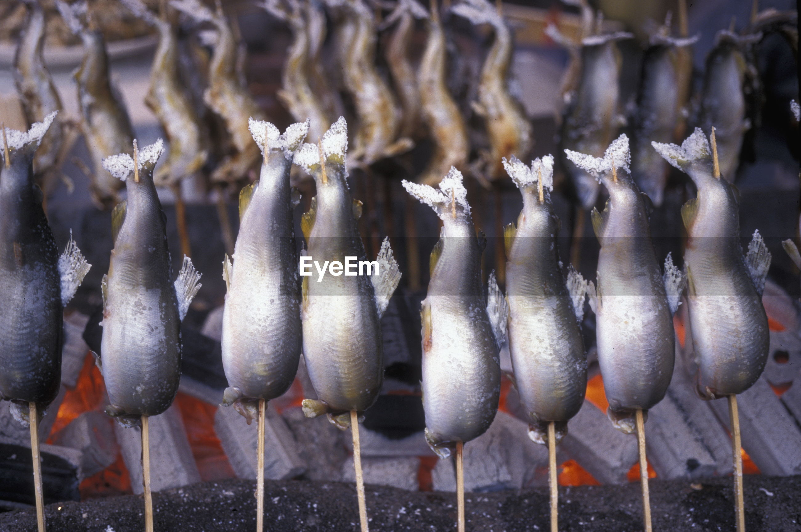 Close-up of fish on skewers over grill
