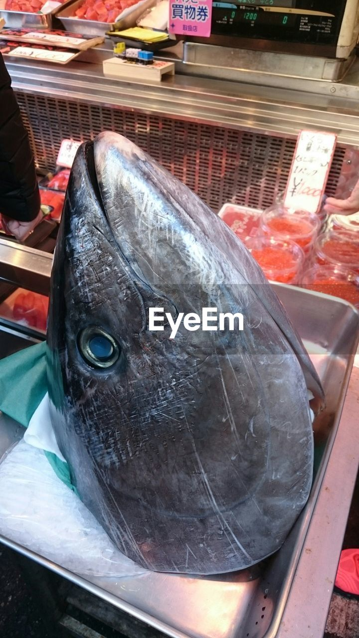 fish, seafood, food and drink, food, freshness, raw food, for sale, market, healthy eating, retail, market stall, fish market, no people, day, cold temperature, close-up, price tag, indoors