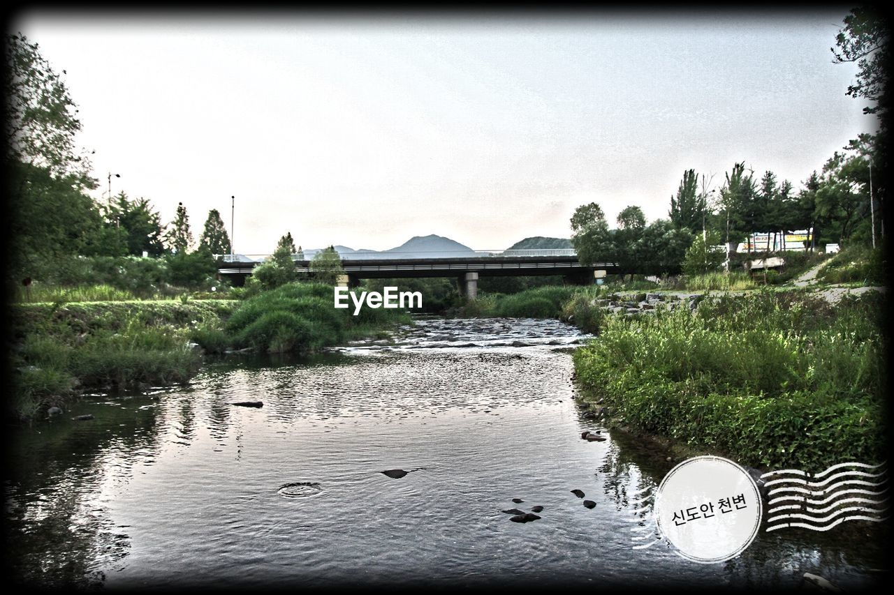 tree, water, river, outdoors, no people, day, nature, architecture, built structure, sky, plant, building exterior
