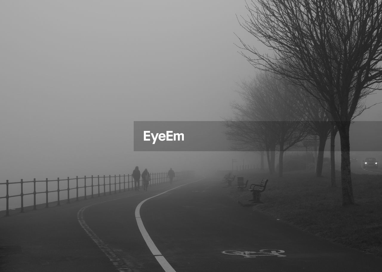 fog, foggy, weather, bare tree, mist, landscape, nature, tranquility, hazy, tree, outdoors, the way forward, winter, beauty in nature, cold temperature, scenics, road, day, sky, no people
