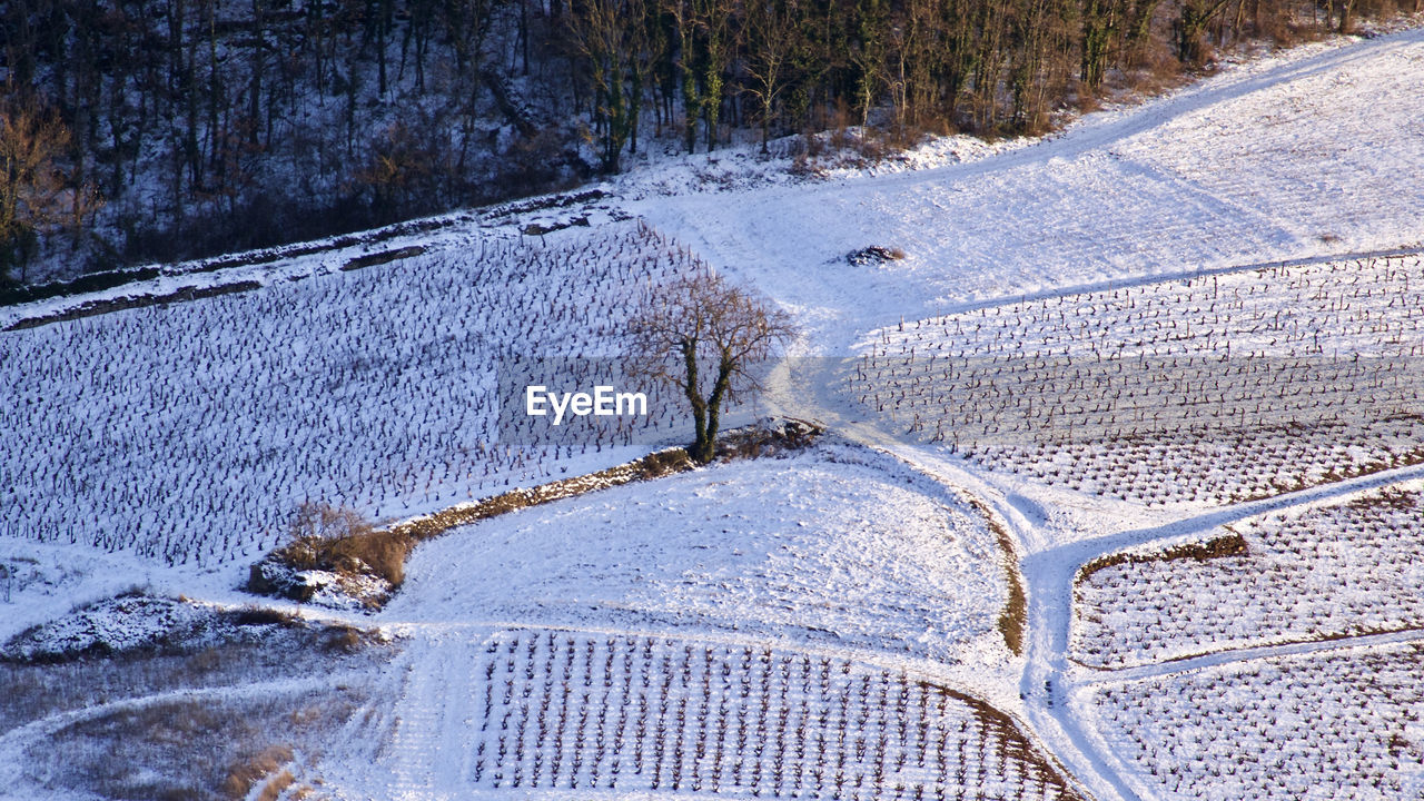 Aerial View Of Snow Covered Field