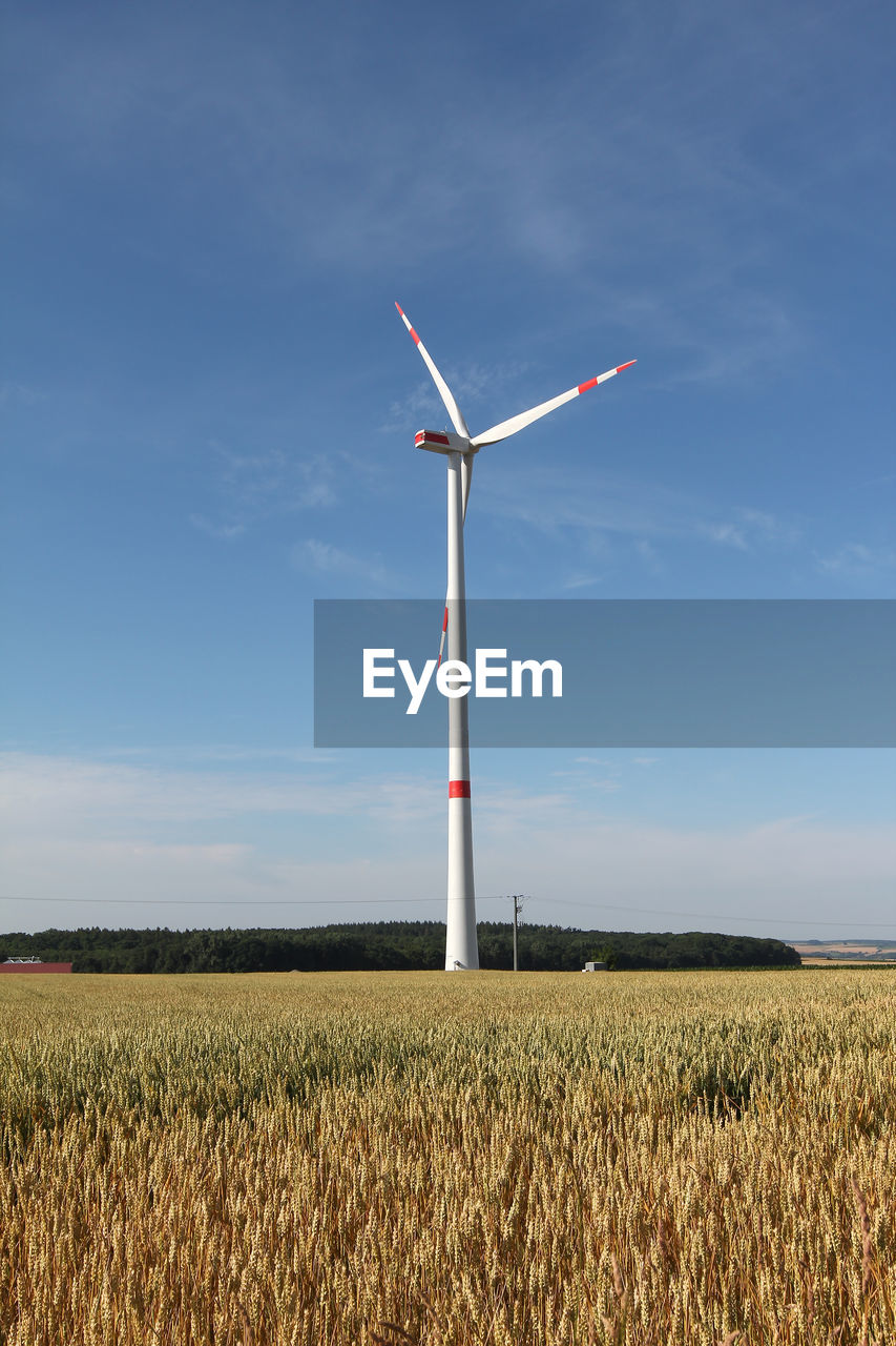 environment, turbine, field, renewable energy, fuel and power generation, wind turbine, land, sky, alternative energy, landscape, environmental conservation, rural scene, wind power, agriculture, nature, growth, farm, day, beauty in nature, plant, no people, outdoors, sustainable resources