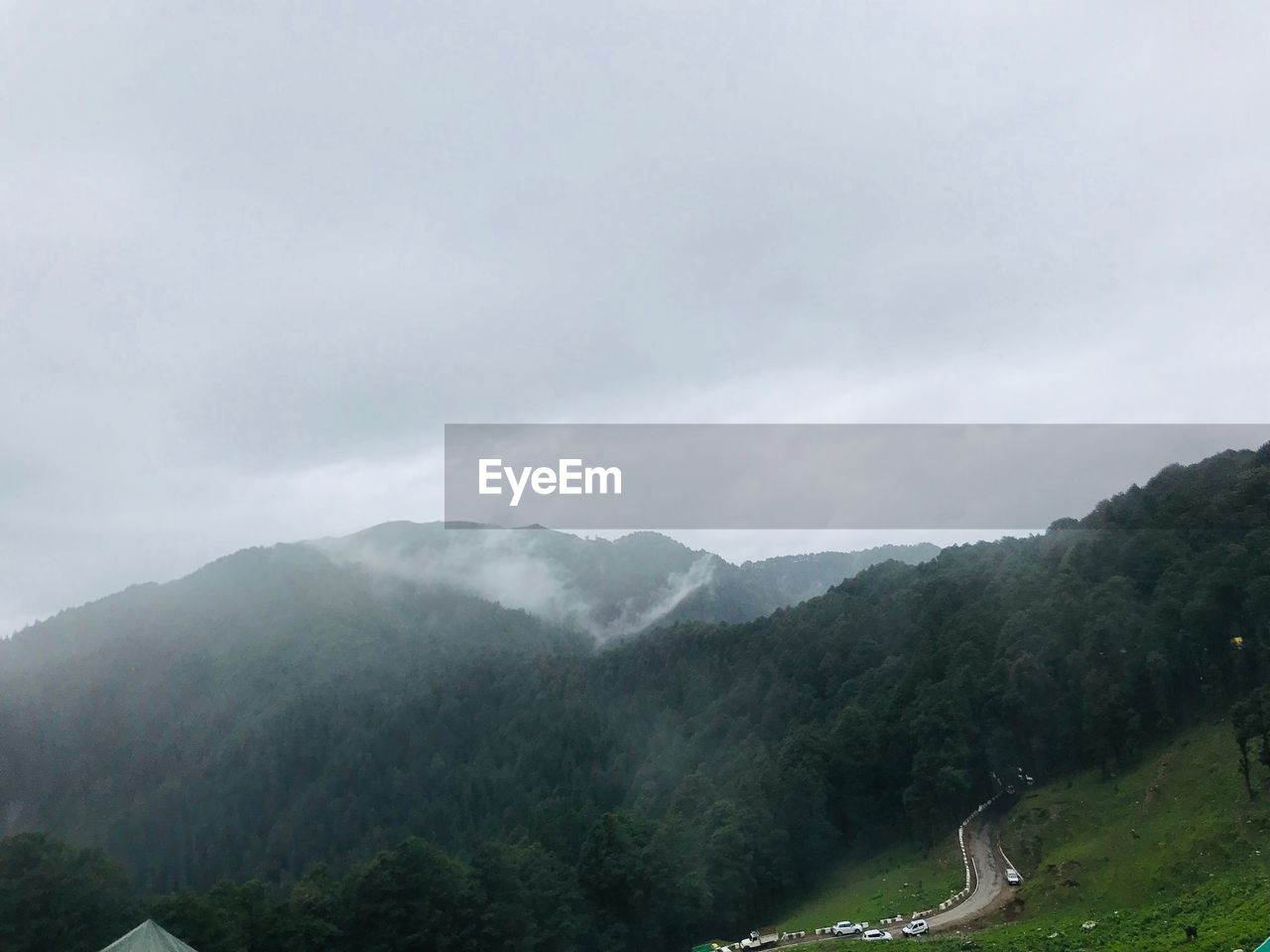 mountain, beauty in nature, scenics - nature, tranquil scene, fog, tranquility, sky, non-urban scene, plant, tree, mountain range, cloud - sky, day, nature, no people, environment, idyllic, landscape, outdoors