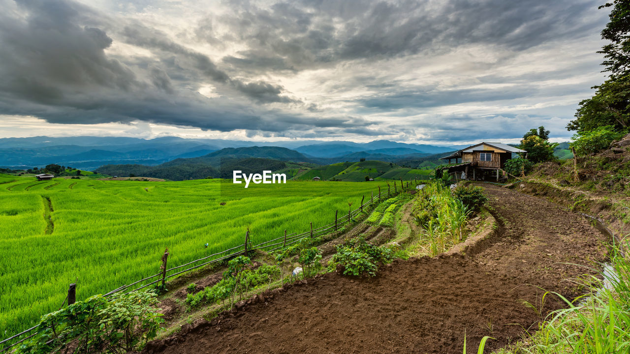 Scenic View Of Agricultural Field Against Cloudy Sky During Sunset