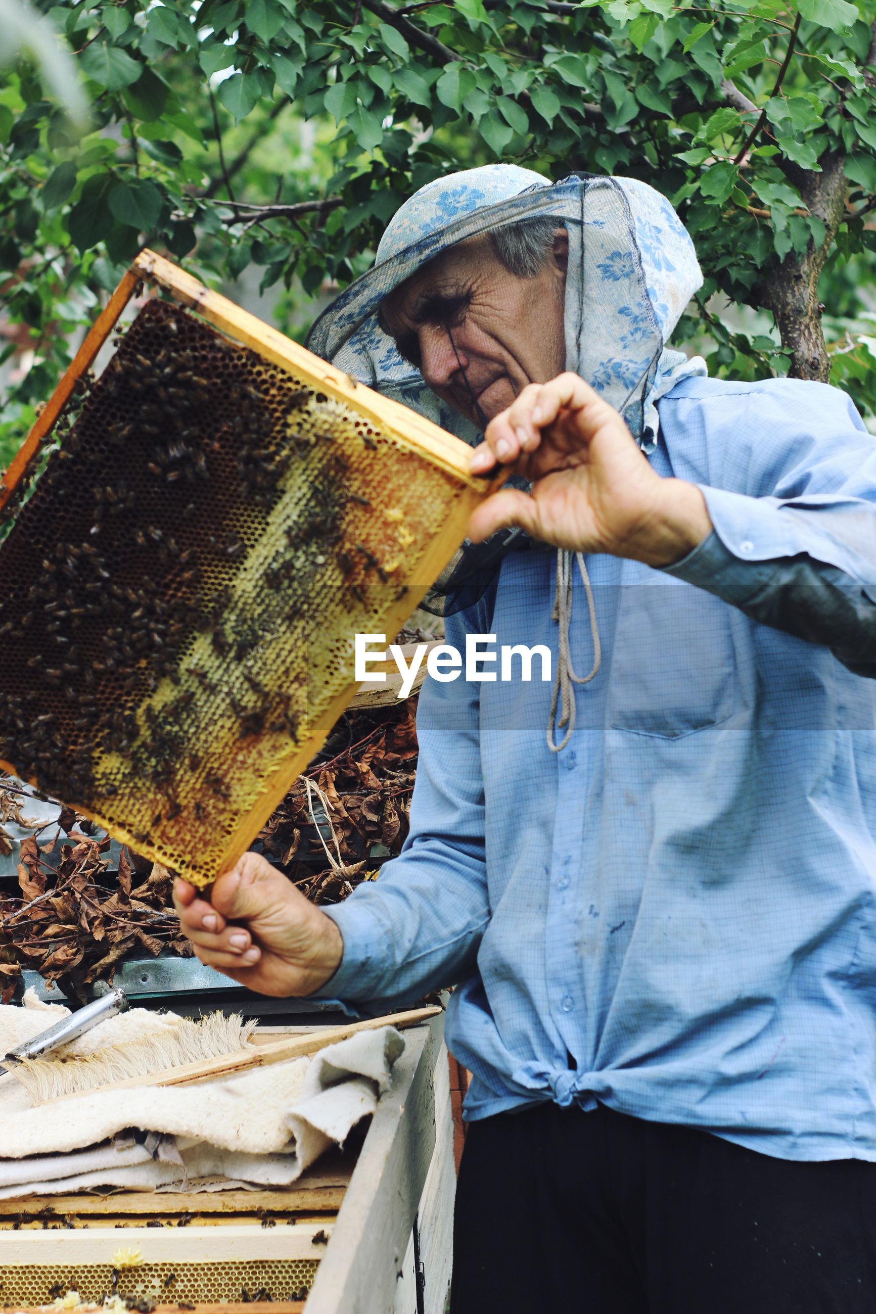 Senior man holding beehive against trees