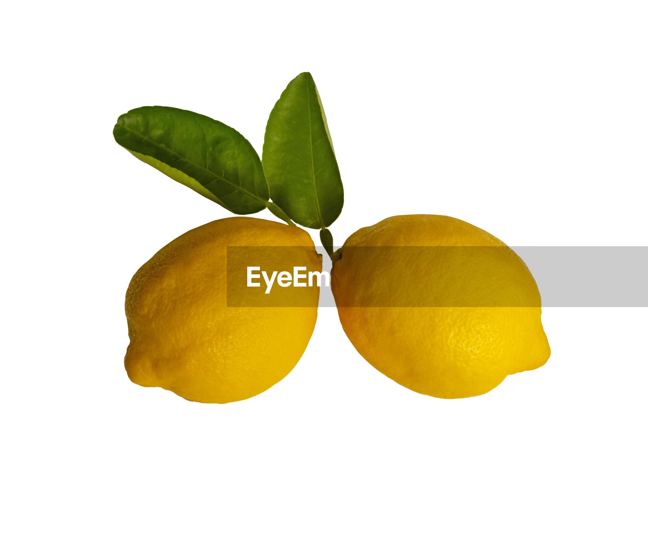 Close-up of lemon against white background