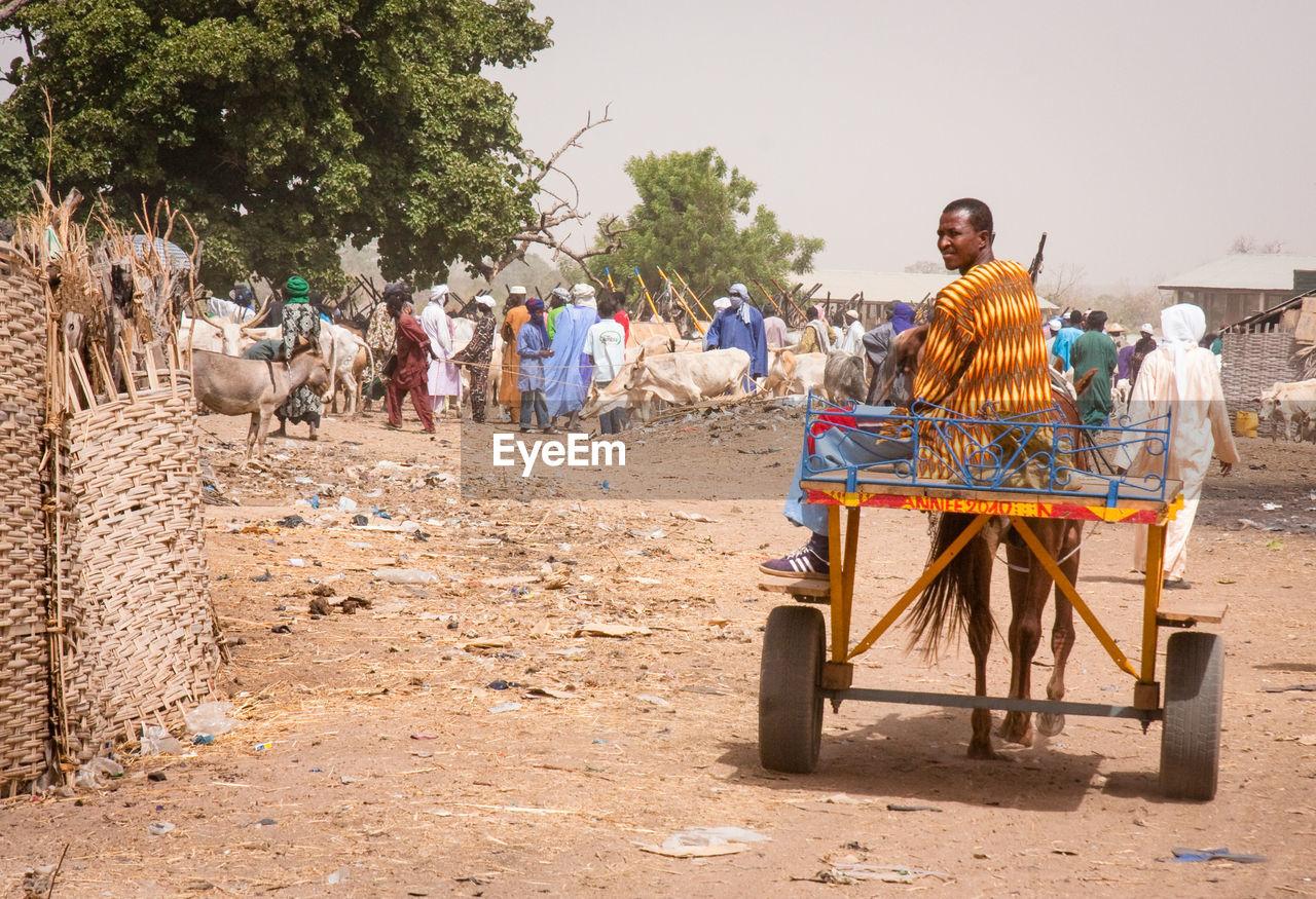 Men Sitting On Donkey Cart Against Sky On Field In Village