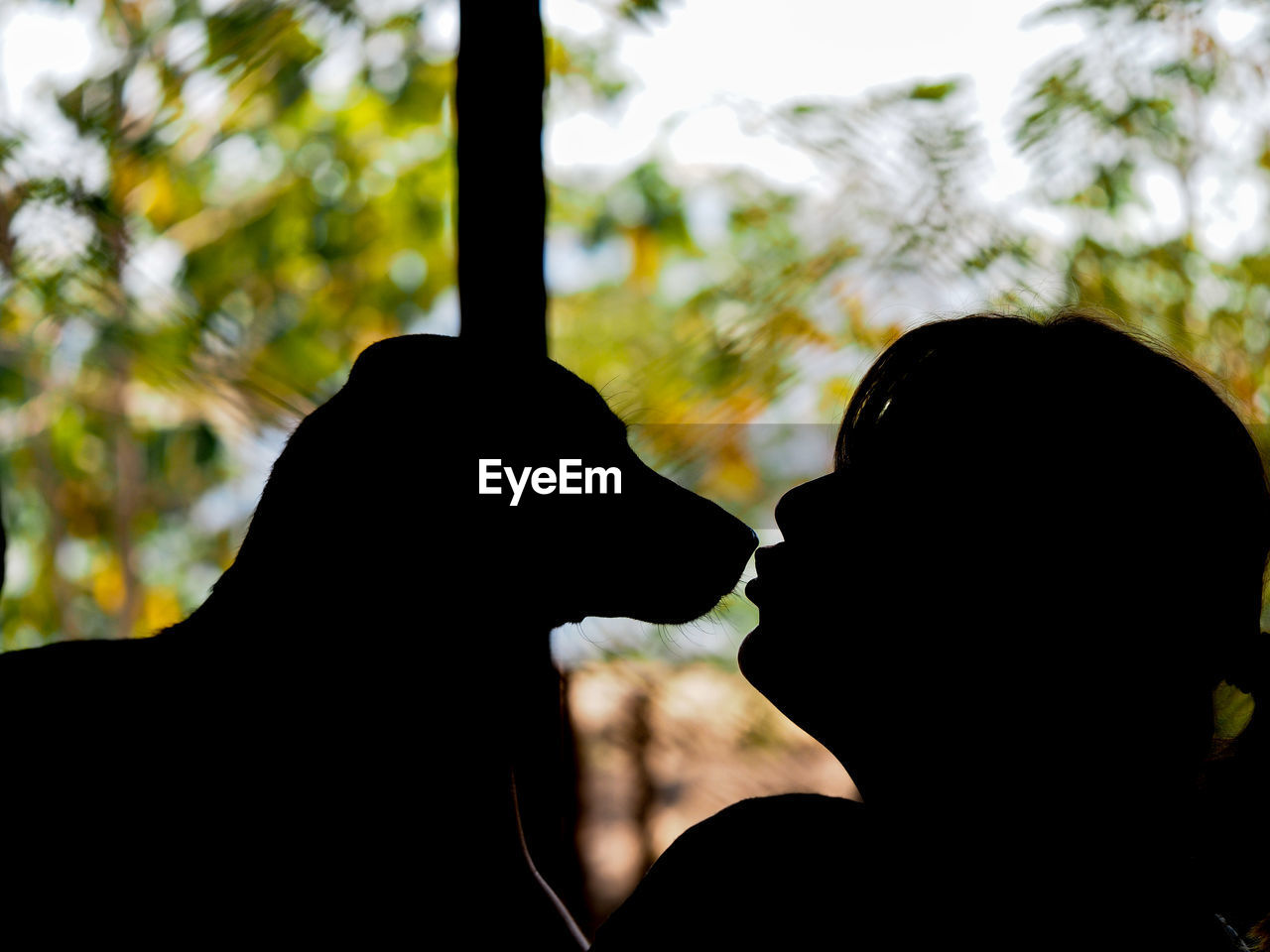 silhouette, focus on foreground, two people, close-up, real people, indoors, day, tree, nature, human hand, sky, people