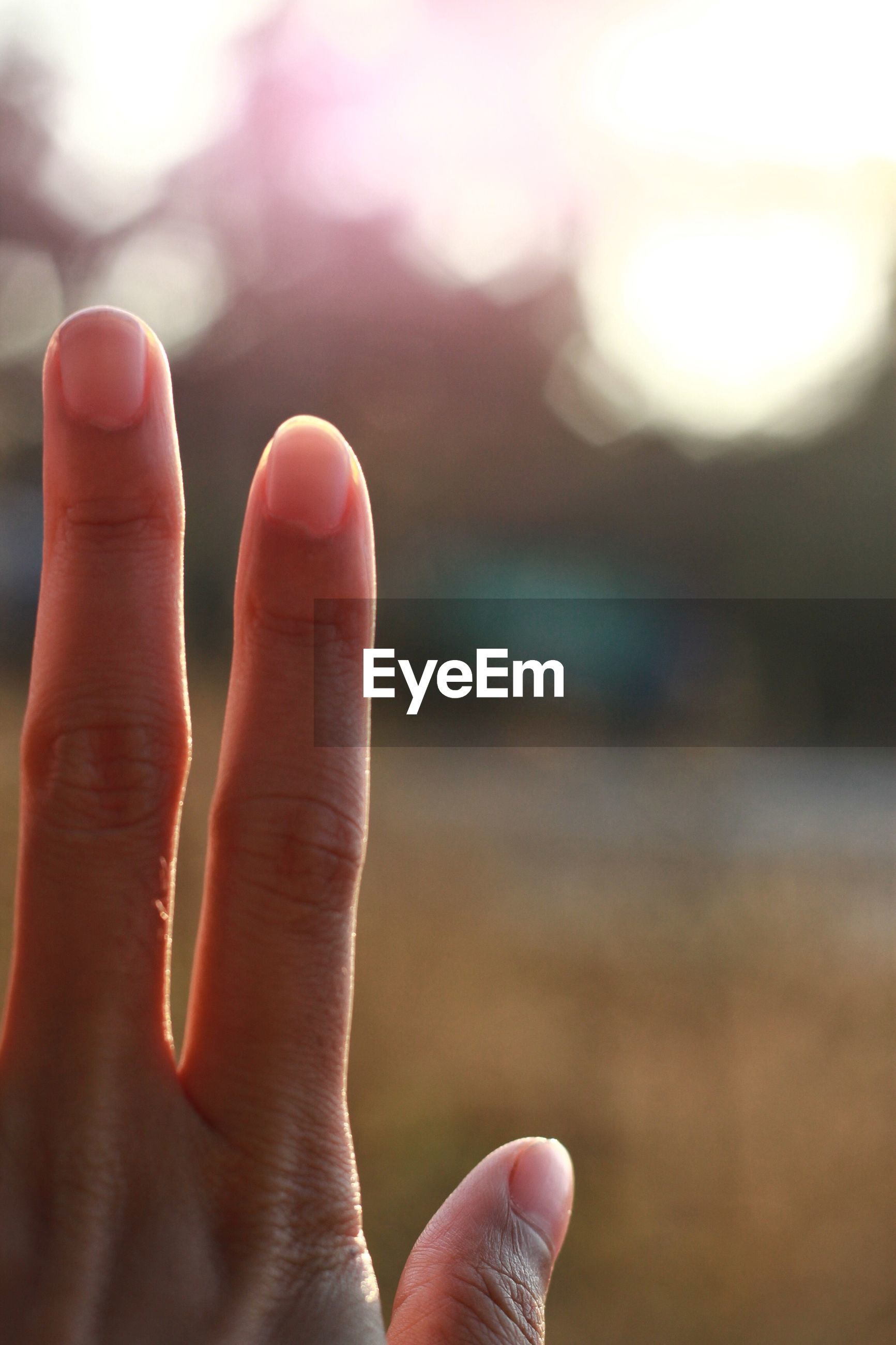Close-up of person hand gesturing outdoors