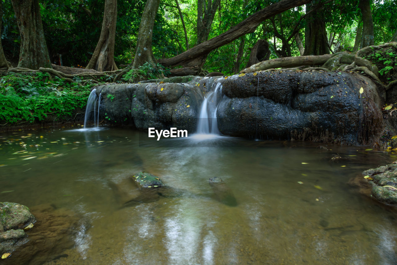 water, waterfall, flowing water, nature, tree, beauty in nature, scenics, forest, no people, tranquil scene, idyllic, outdoors, long exposure, tranquility, day, motion, river, growth, travel destinations