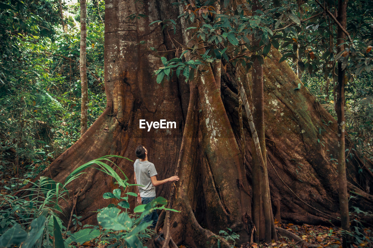 tree, forest, plant, land, one person, nature, growth, woodland, tree trunk, trunk, young adult, standing, day, plant part, leisure activity, beauty in nature, adult, environment, full length, outdoors, rainforest