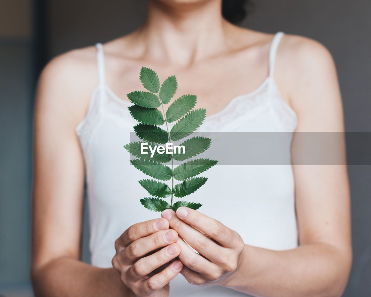 Midsection Of Woman Holding Leaves At Home
