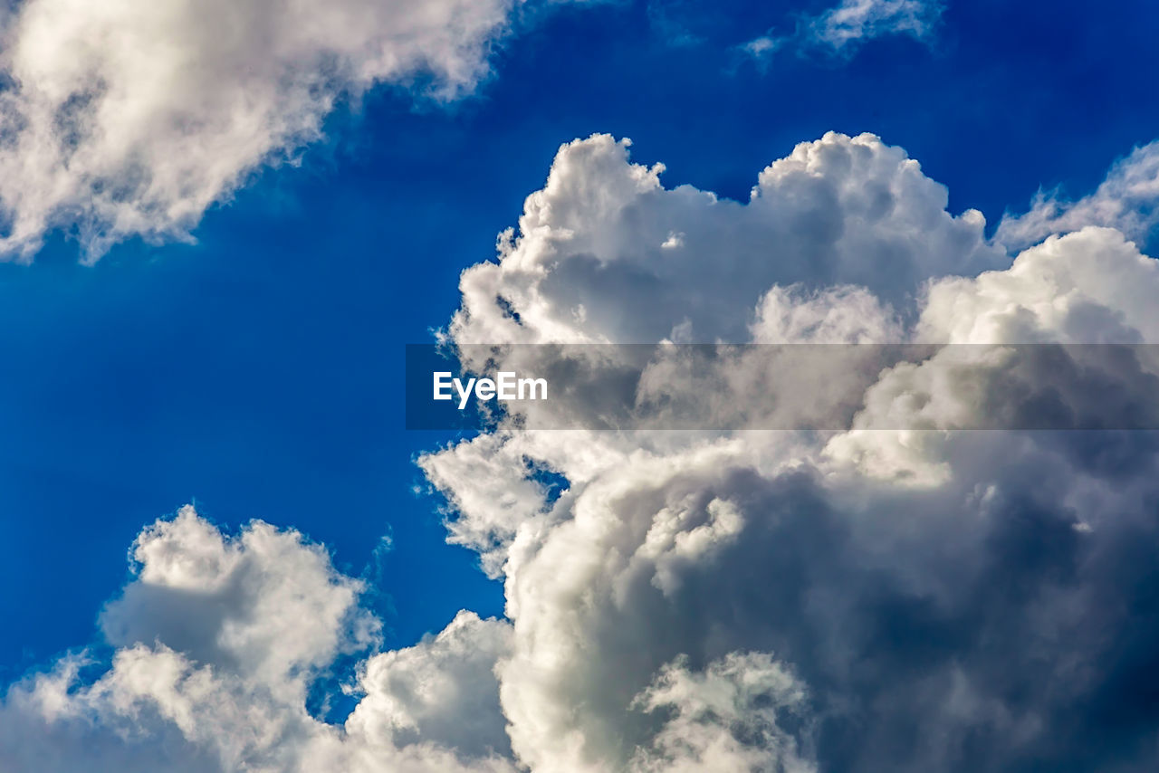cloud - sky, nature, sky, beauty in nature, blue, fluffy, backgrounds, tranquility, low angle view, scenics, white color, cloudscape, sky only, day, no people, full frame, vibrant color, tranquil scene, outdoors