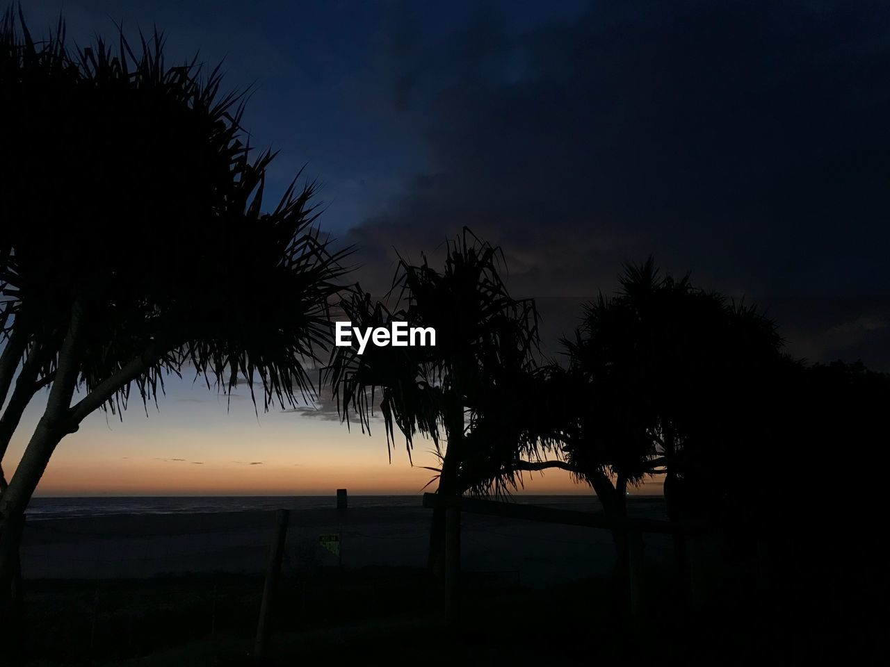 sky, silhouette, tree, plant, sunset, palm tree, beauty in nature, tranquil scene, tropical climate, scenics - nature, tranquility, nature, water, growth, no people, cloud - sky, outdoors, sea, non-urban scene, coconut palm tree