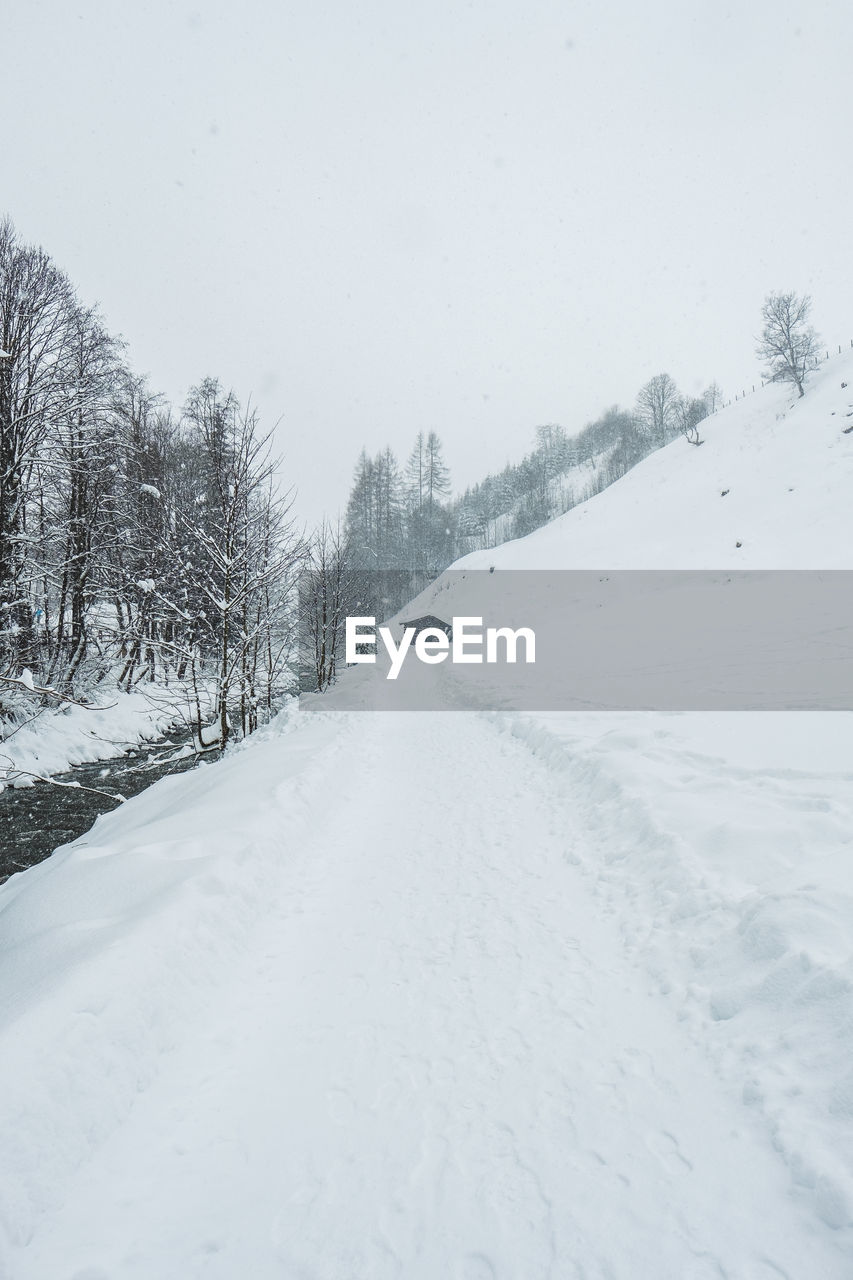 snow, cold temperature, winter, tree, white color, covering, road, transportation, sky, nature, beauty in nature, no people, plant, scenics - nature, tranquility, day, tranquil scene, direction, land, snowing, outdoors, extreme weather, blizzard