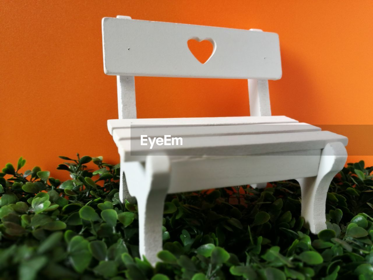 seat, no people, plant, orange color, red, growth, leaf, nature, plant part, wall - building feature, white color, chair, day, close-up, empty, outdoors, absence, relaxation, architecture