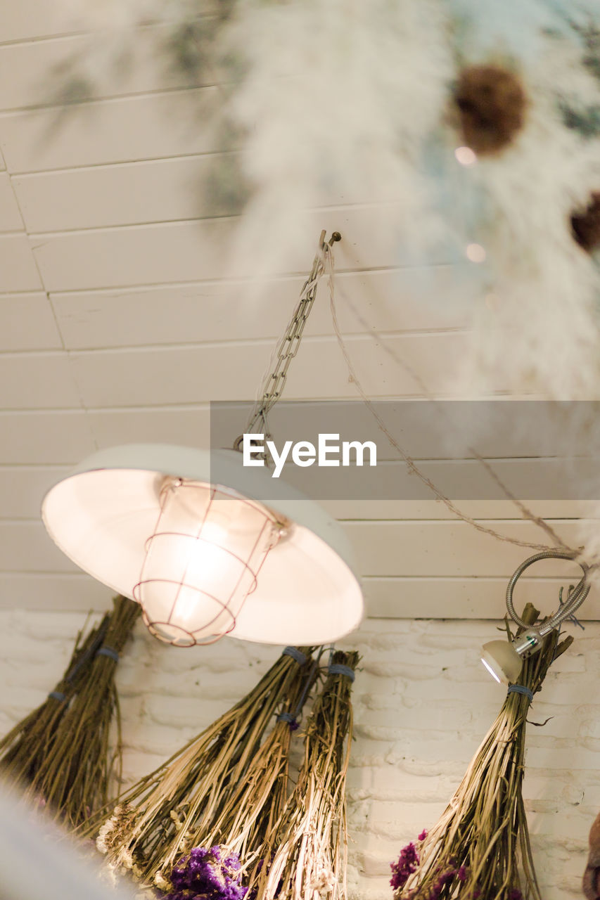no people, hanging, focus on foreground, day, nature, close-up, decoration, outdoors, lighting equipment, wall - building feature, still life, rope, plant, celebration, selective focus, holiday, feather, food and drink, ceiling