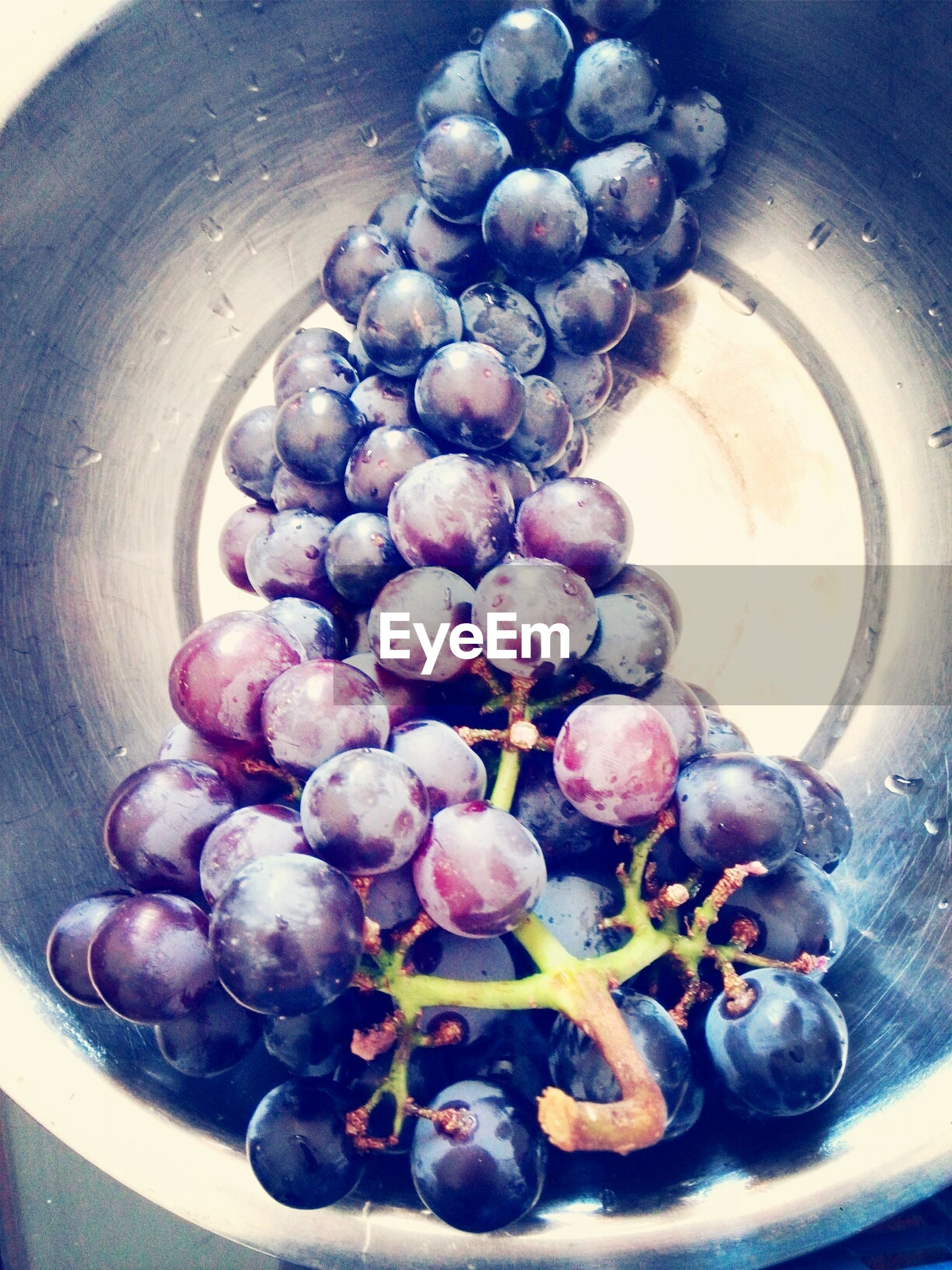 food and drink, food, freshness, healthy eating, fruit, indoors, grape, still life, bowl, ripe, close-up, large group of objects, blueberry, high angle view, organic, abundance, juicy, table, berry fruit, bunch