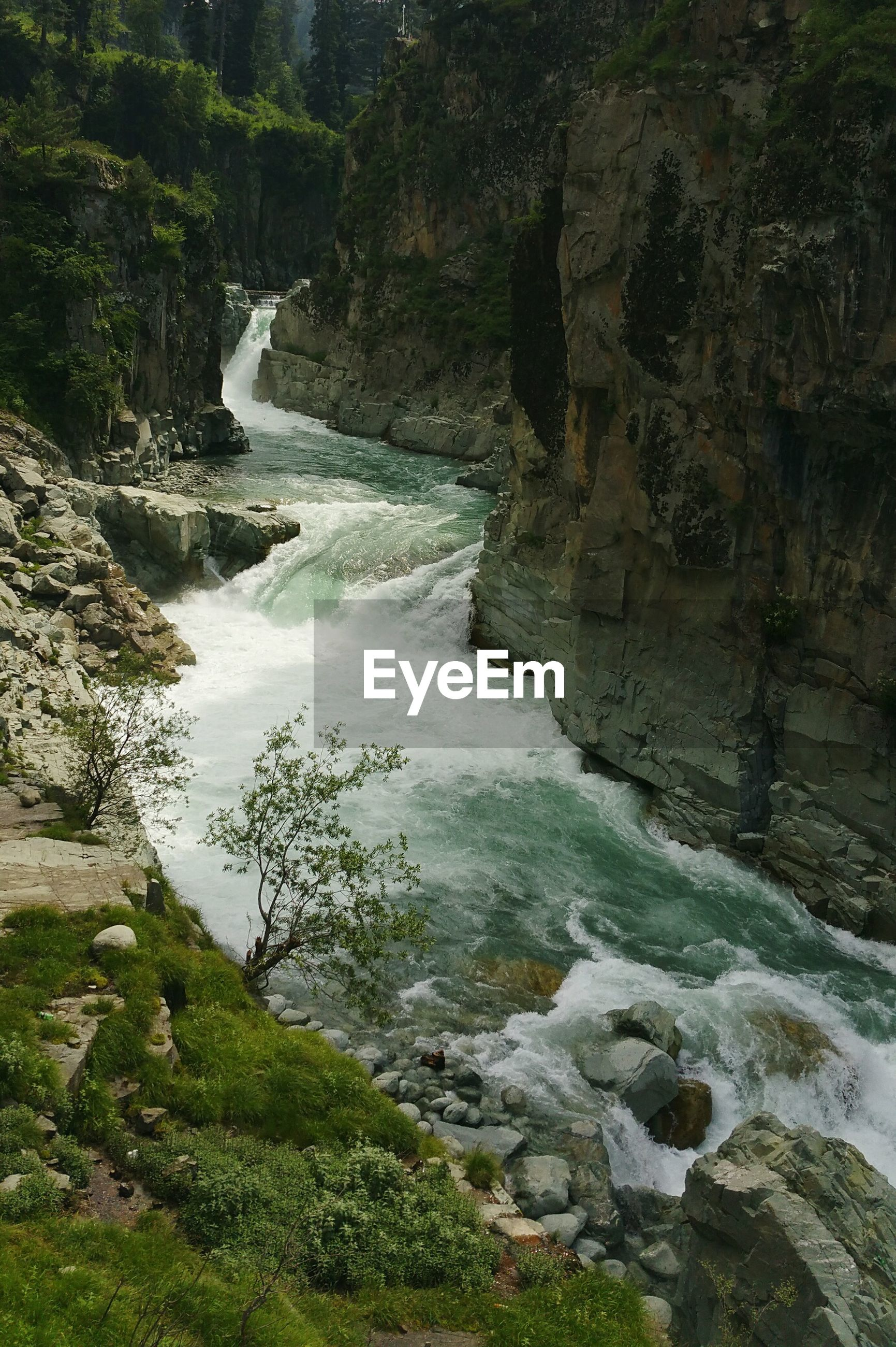 Scenic view of river flowing between mountains in forest