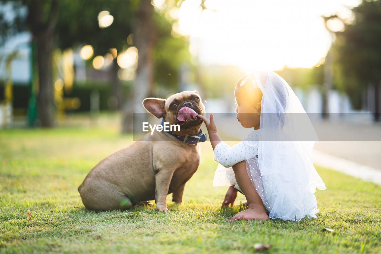 dog, canine, one animal, domestic, pets, domestic animals, mammal, grass, nature, vertebrate, plant, field, day, sitting, park, tree, people, focus on foreground, mouth open