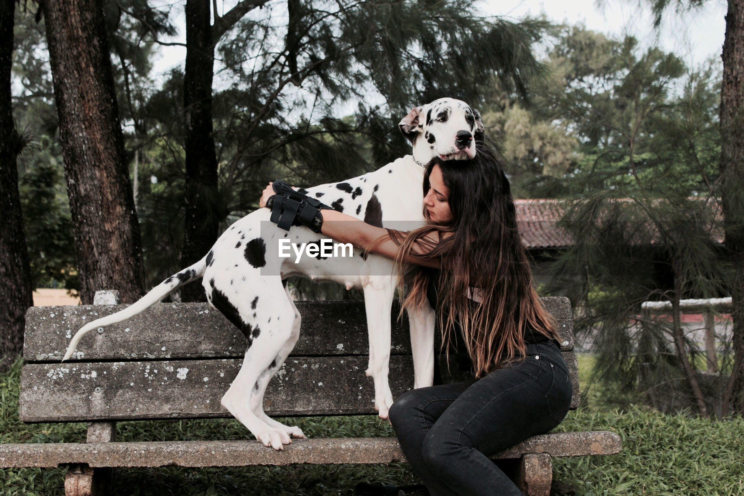 Woman hugging big dog on park bench