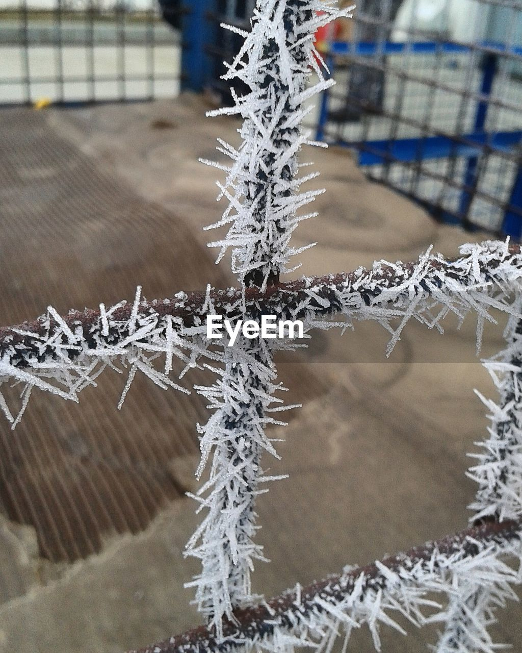 cold temperature, winter, snow, focus on foreground, close-up, ice, frozen, no people, nature, day, frost, metal, outdoors, fence, crystal, pattern, barrier, boundary, white color, icicle