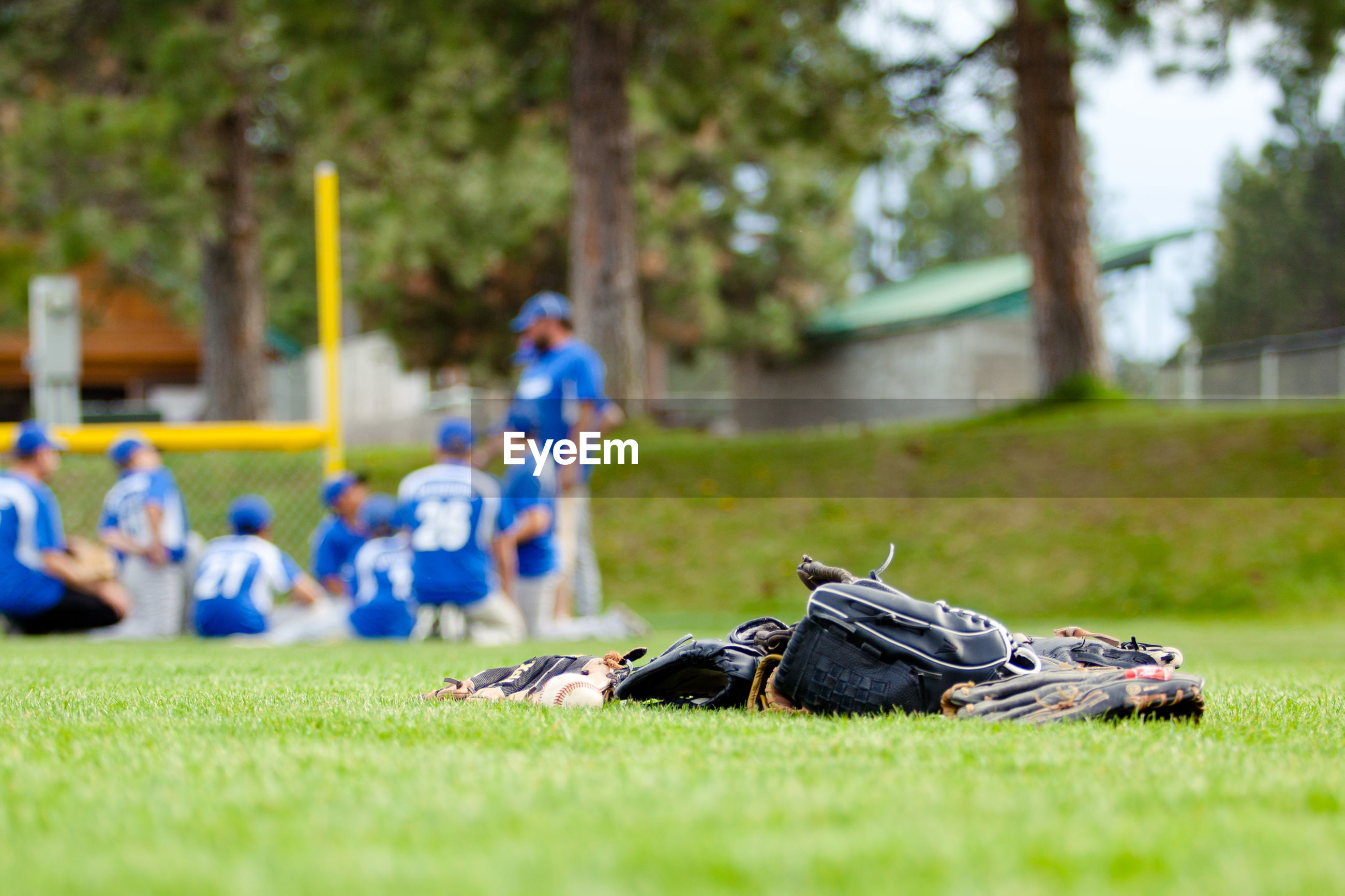 Baseball gloves by players on grassy field