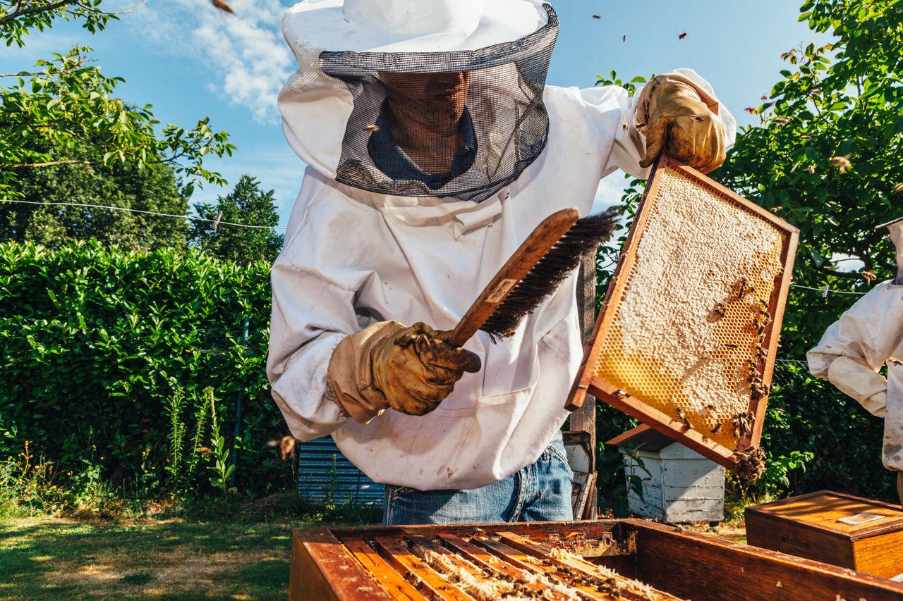 Man holding beehive