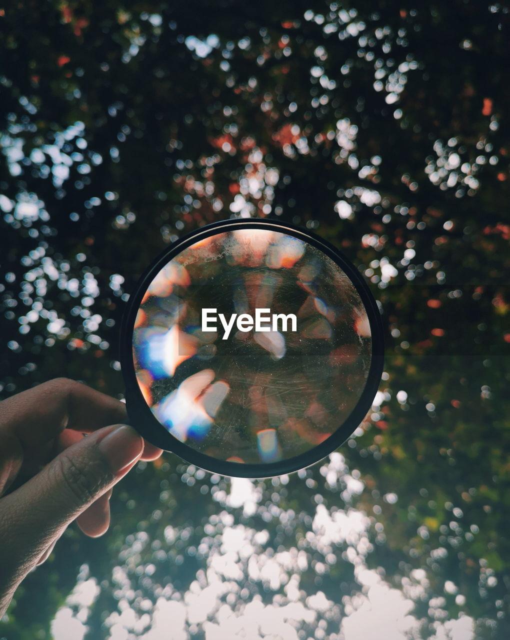 Human Hand Eyesight Tree Refraction Holding Magnifying Glass Reflection Close-up