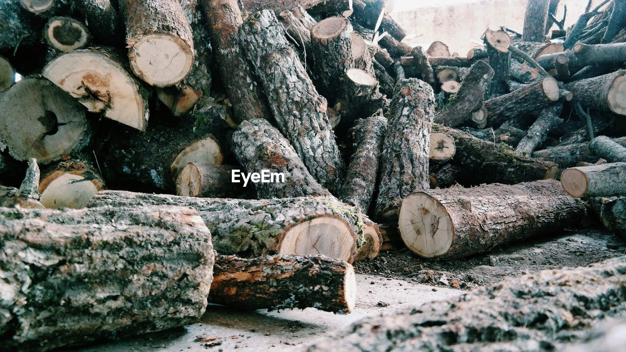 log, timber, firewood, lumber industry, stack, tree, deforestation, wood, forest, fossil fuel, wood - material, no people, abundance, environmental issues, day, large group of objects, nature, fuel and power generation, heap, woodpile, outdoors, pollution