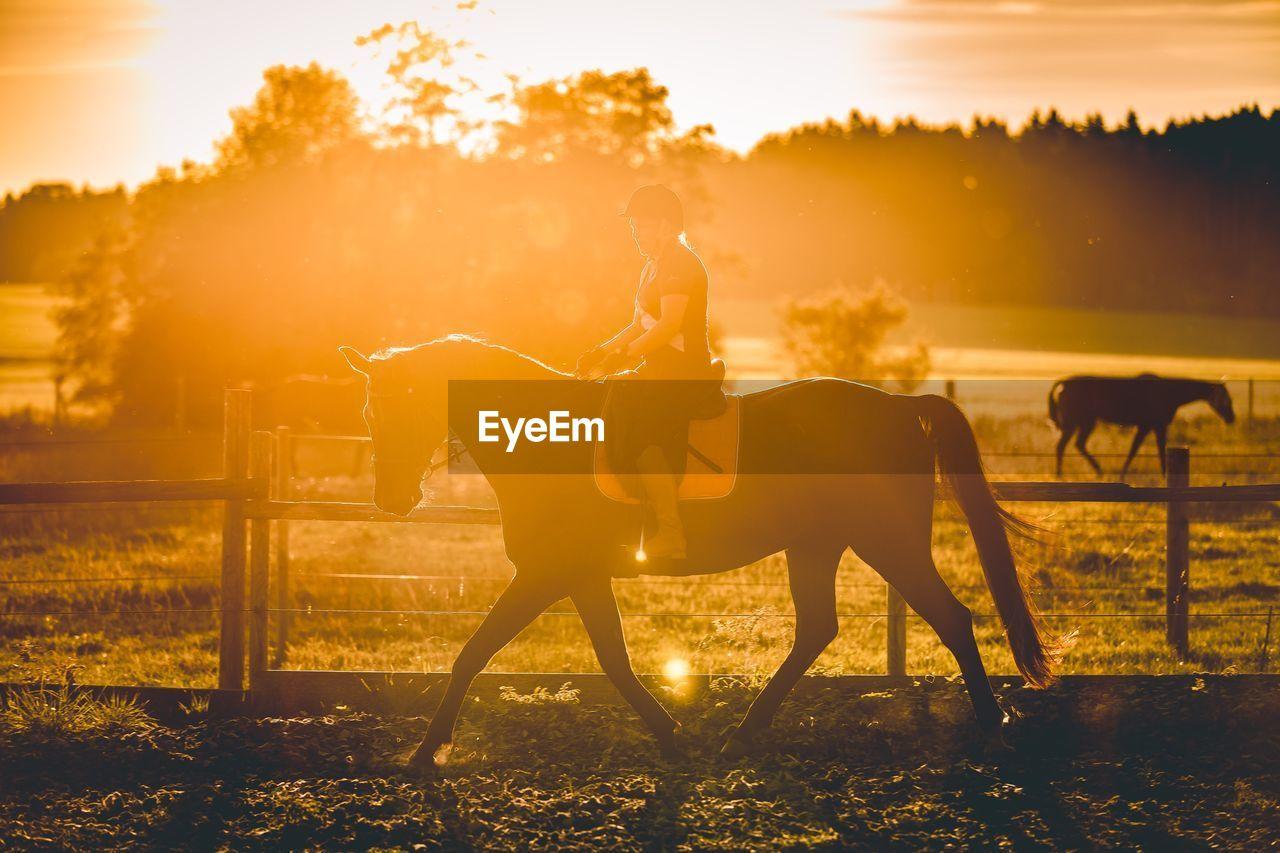 Woman Horseback Riding In Ranch