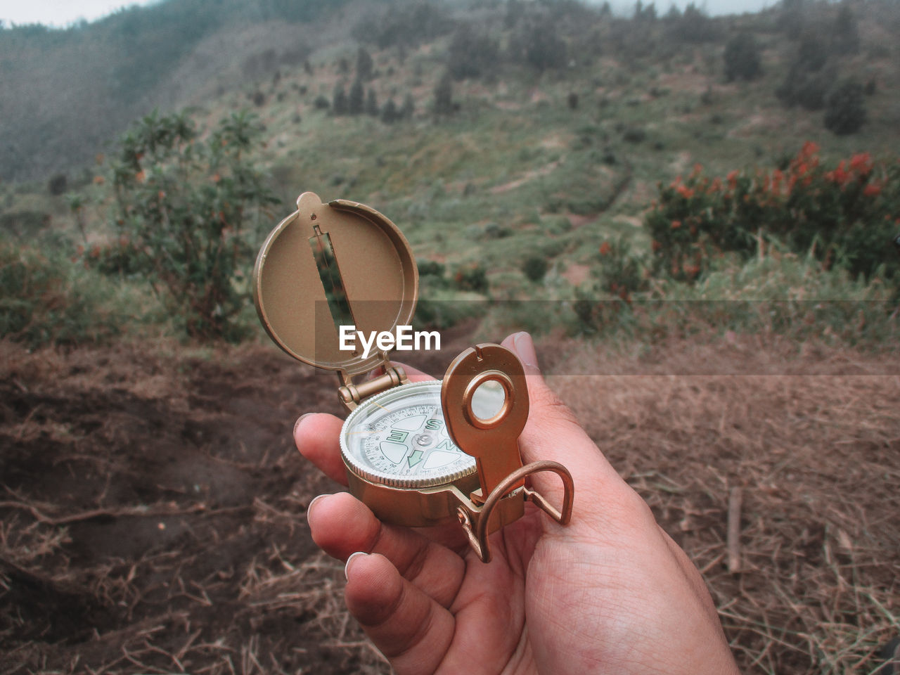 Cropped Hand Of Woman Holding Navigational Compass