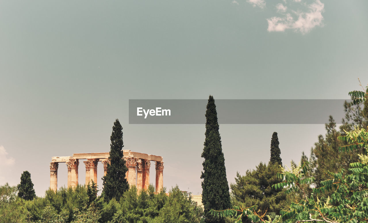plant, sky, tree, nature, growth, architecture, no people, built structure, day, copy space, beauty in nature, clear sky, tranquility, land, history, tranquil scene, scenics - nature, green color, outdoors, the past, architectural column, ruined, ancient civilization
