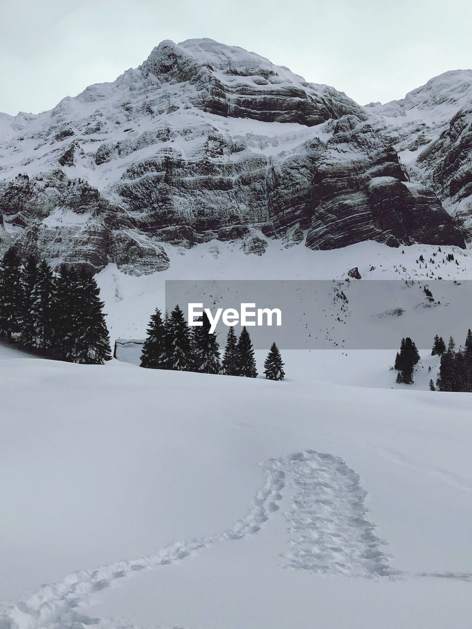 snow, winter, cold temperature, mountain, scenics - nature, beauty in nature, tree, white color, plant, tranquility, covering, tranquil scene, snowcapped mountain, sky, nature, environment, no people, day, non-urban scene, mountain range, extreme weather, mountain peak, powder snow