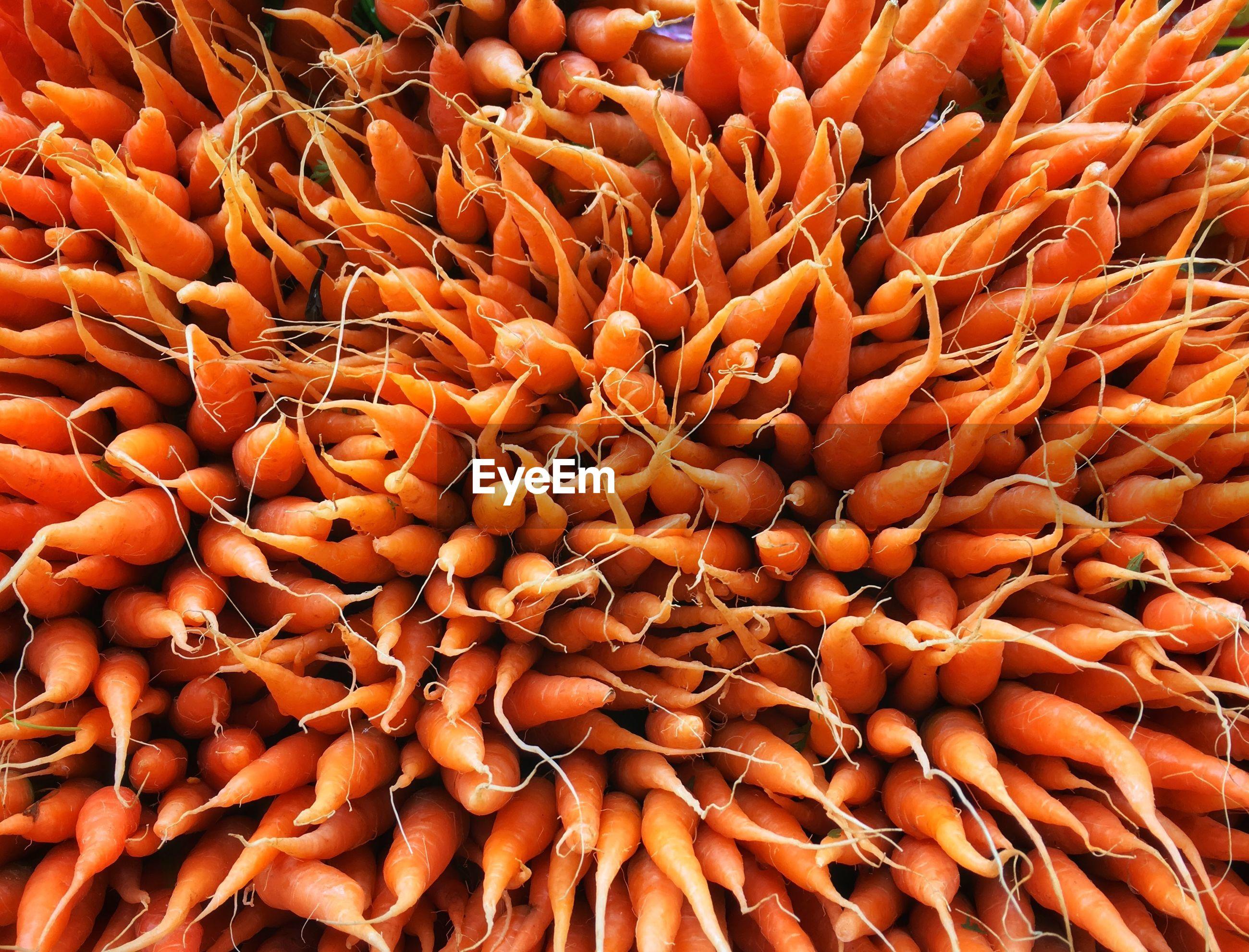 Full frame shot of little carrot for sale at market