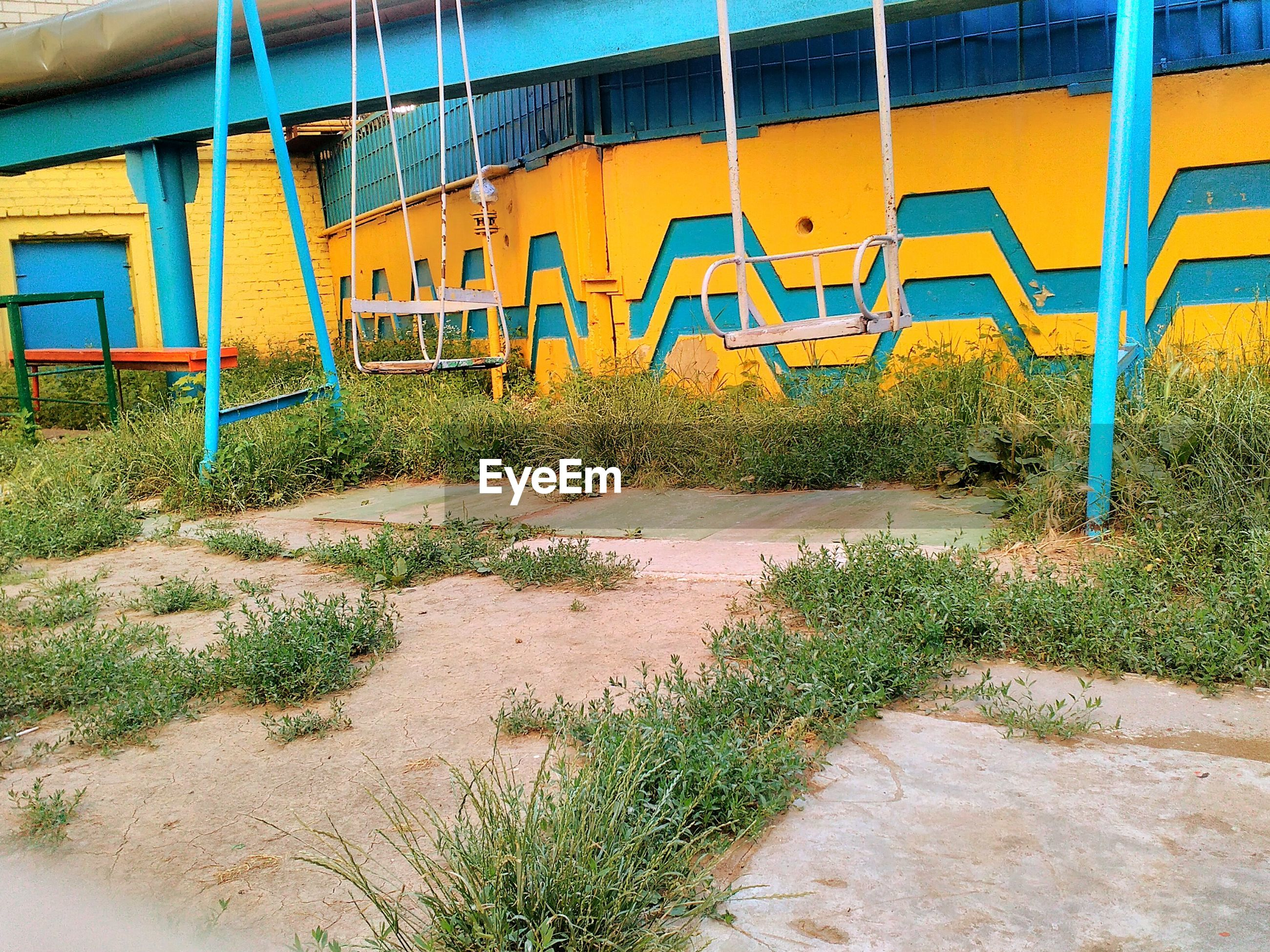 built structure, architecture, grass, plant, yellow, day, no people, outdoors, growth, green color, multi colored, blue, nature, green