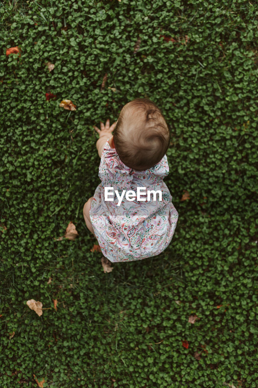 High Angle View Of Cute Baby Girl Crawling On Grassy Field