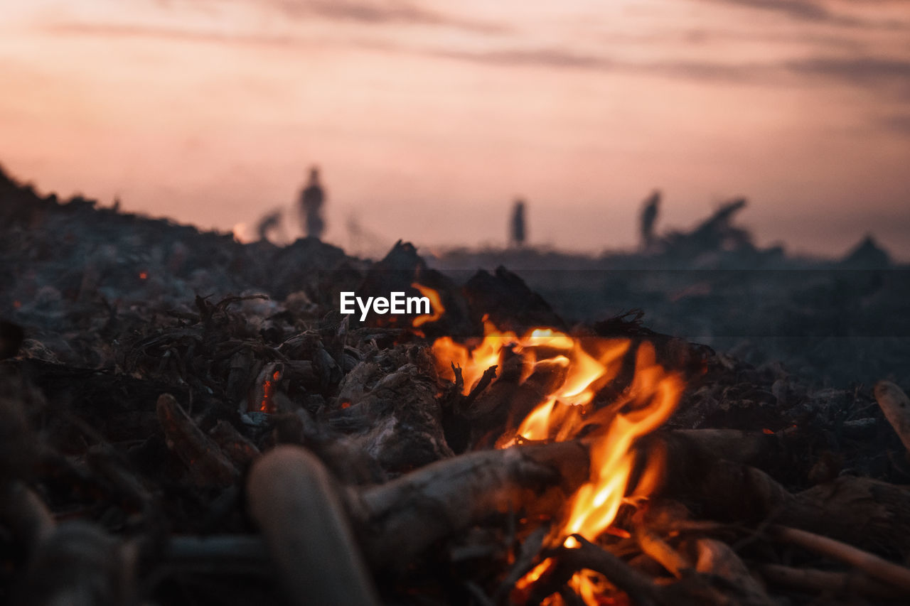 heat - temperature, burning, fire, fire - natural phenomenon, bonfire, sunset, flame, orange color, nature, wood, firewood, log, wood - material, glowing, sky, no people, campfire, environment, close-up, motion, outdoors