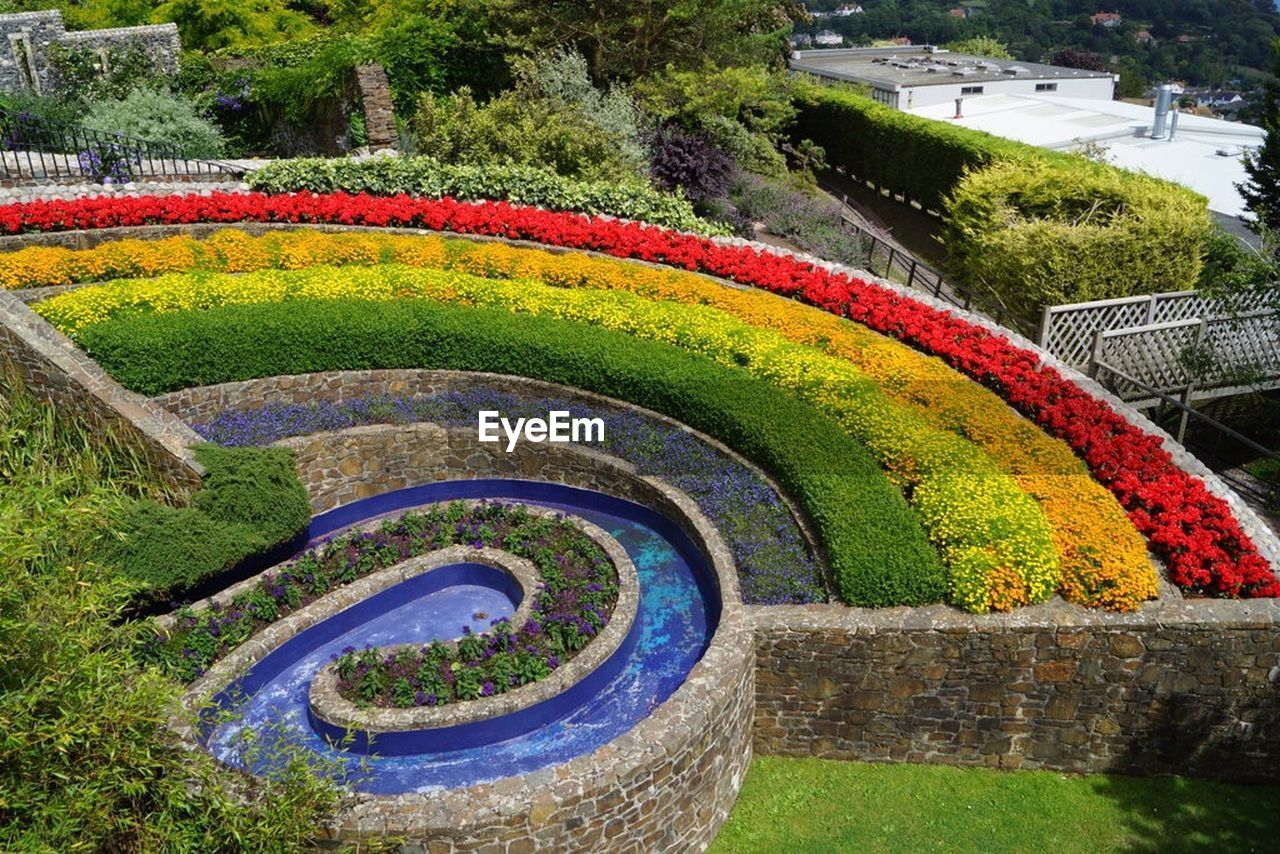 multi colored, day, flower, no people, tree, outdoors, nature, beauty in nature, curve, water, park - man made space, grass, plant, growth, flowerbed, freshness