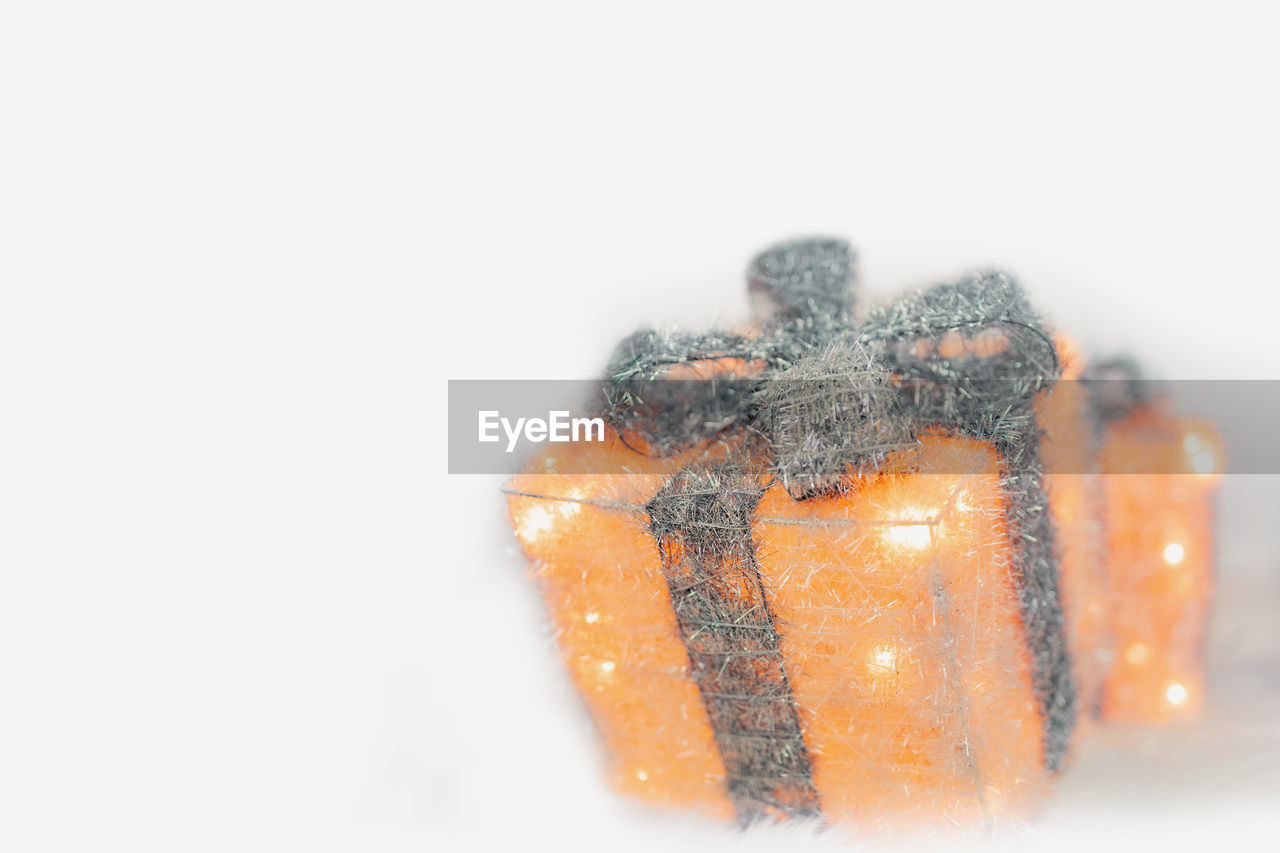studio shot, white background, close-up, indoors, copy space, no people, winter, cold temperature, snow, focus on foreground, orange color, still life, nature, frozen, white color, holiday, celebration, christmas